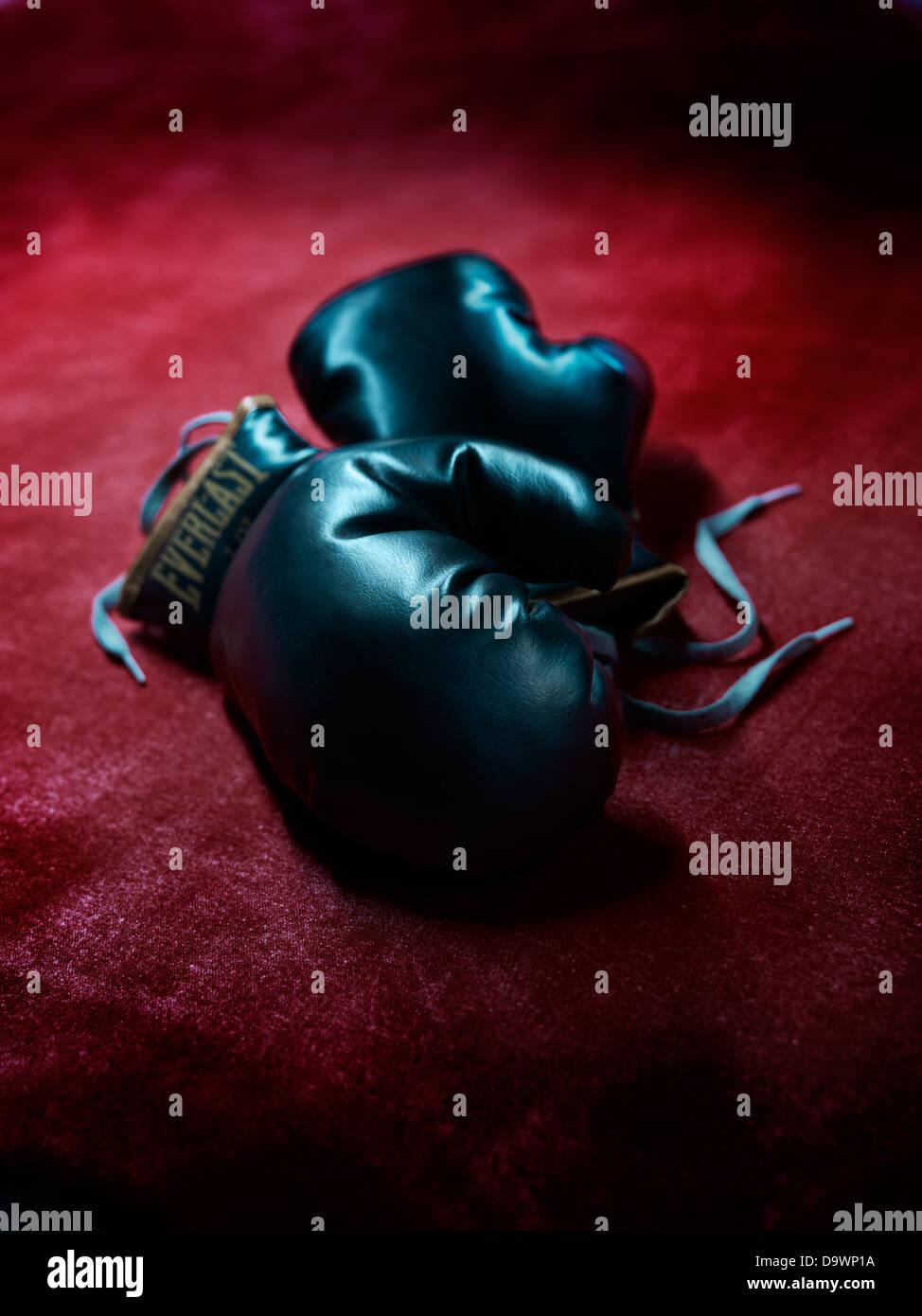 Boxhandschuhe Stockbild