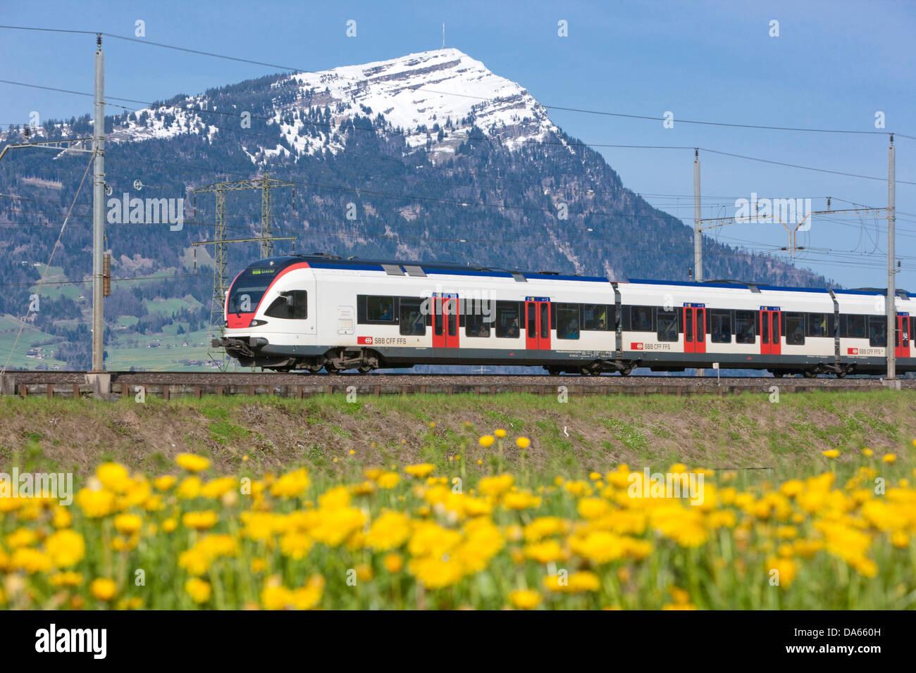 Regional Bahn, Rigi, Straße, Bahn, Zug, Eisenbahn, Berg, Berge, Blume, Blumen, Kanton Schwyz, SZ, zentrale Stockbild