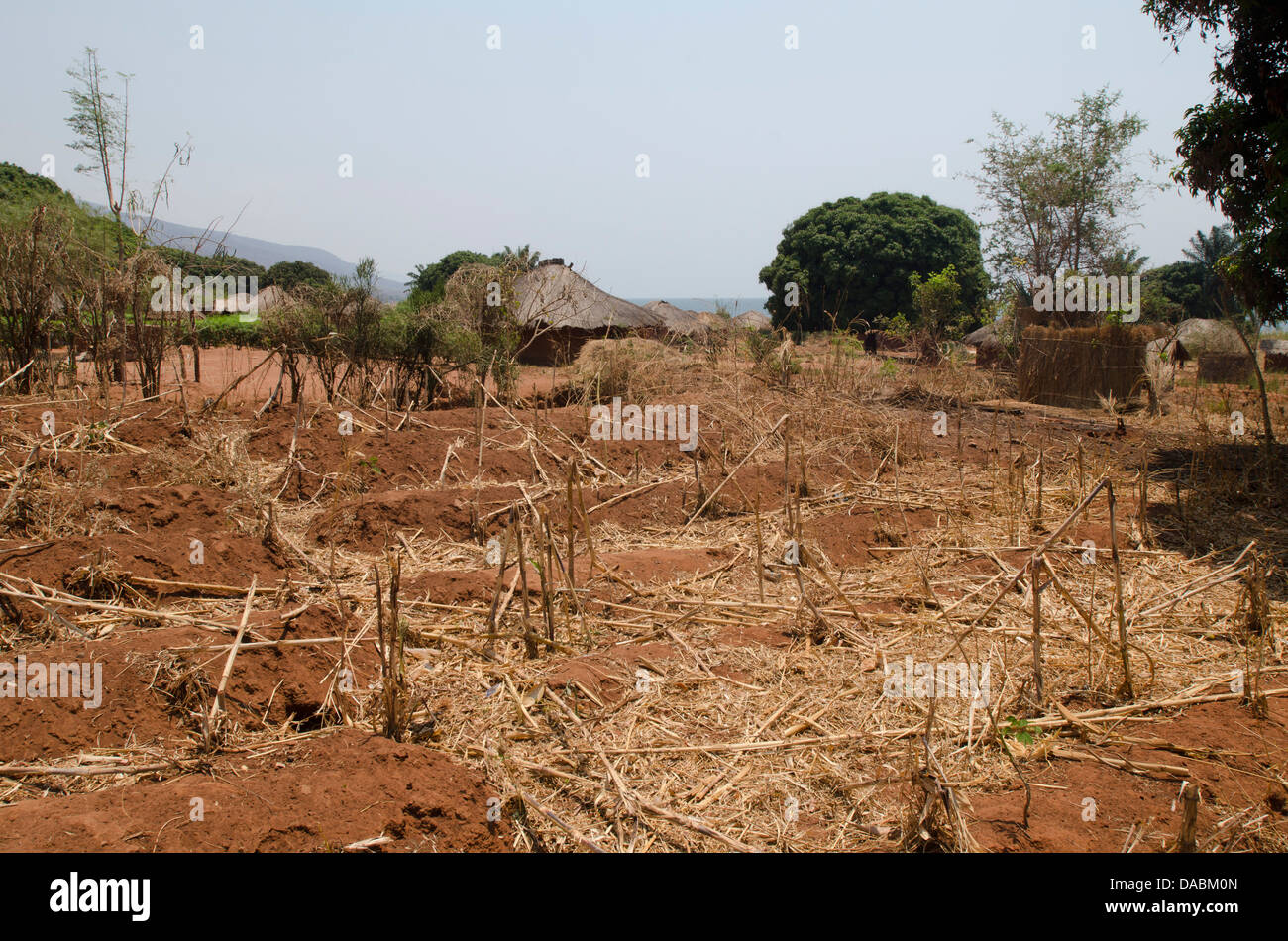 zambia agriculture stockfotos zambia agriculture bilder alamy. Black Bedroom Furniture Sets. Home Design Ideas