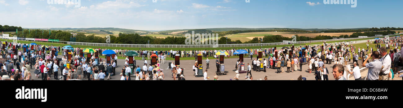 Panorama der Gordon Gehäuse Race Course und Sussex Downs in Goodwood Stockbild