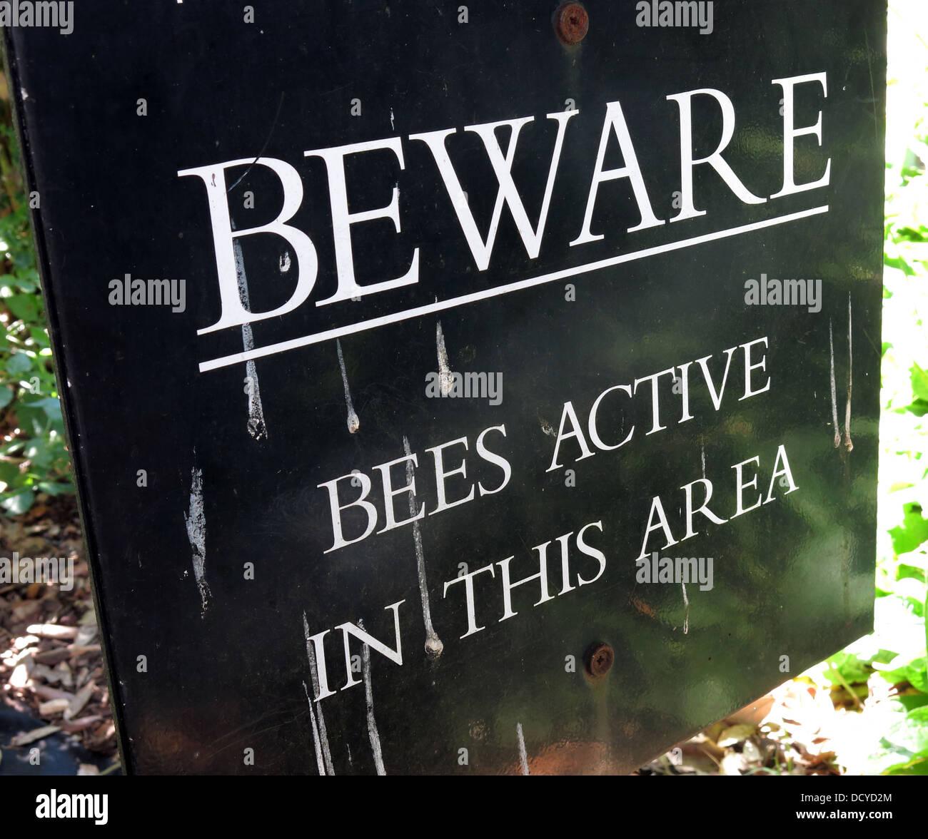 Laden Sie dieses Alamy Stockfoto Schild, Vorsicht Bienen, die in diesem Bereich aktiv - DCYD2M