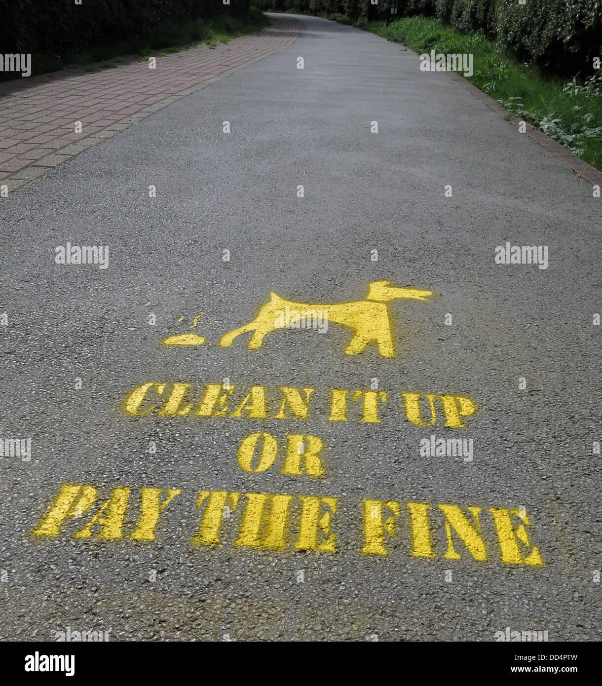Laden Sie dieses Alamy Stockfoto Gelbe bereinigen Ihre Hund durcheinander Schablone Borough Council Warrington, Cheshire, England, UK - DD4PTW