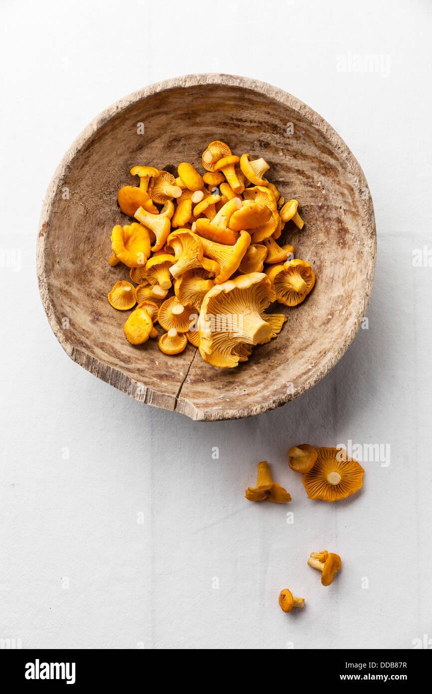 Rohe Pilze in Holzschale Stockbild