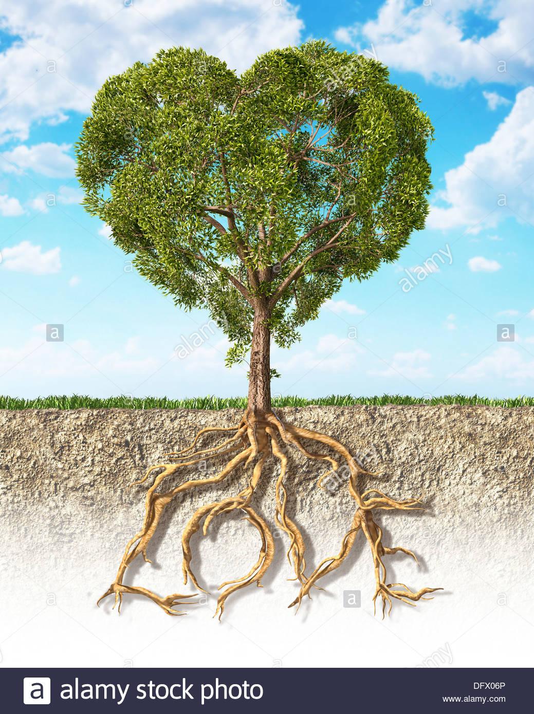 Querschnitt des Bodens zeigt einen herzförmigen Baum mit seinen Wurzeln als Text Liebe Stockfoto