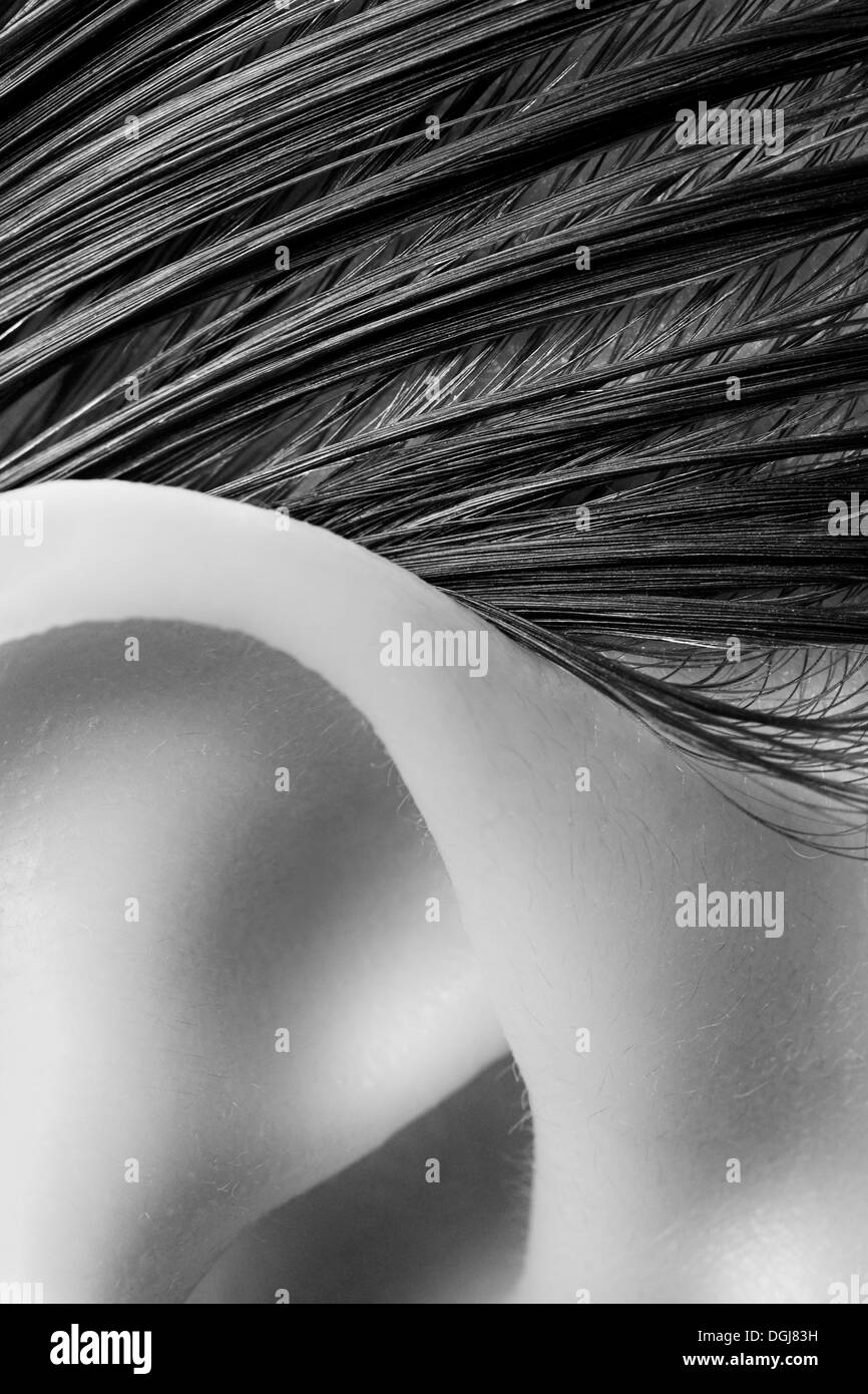 Nahaufnahme eines Womans Ohr und Haaransatz. Stockbild