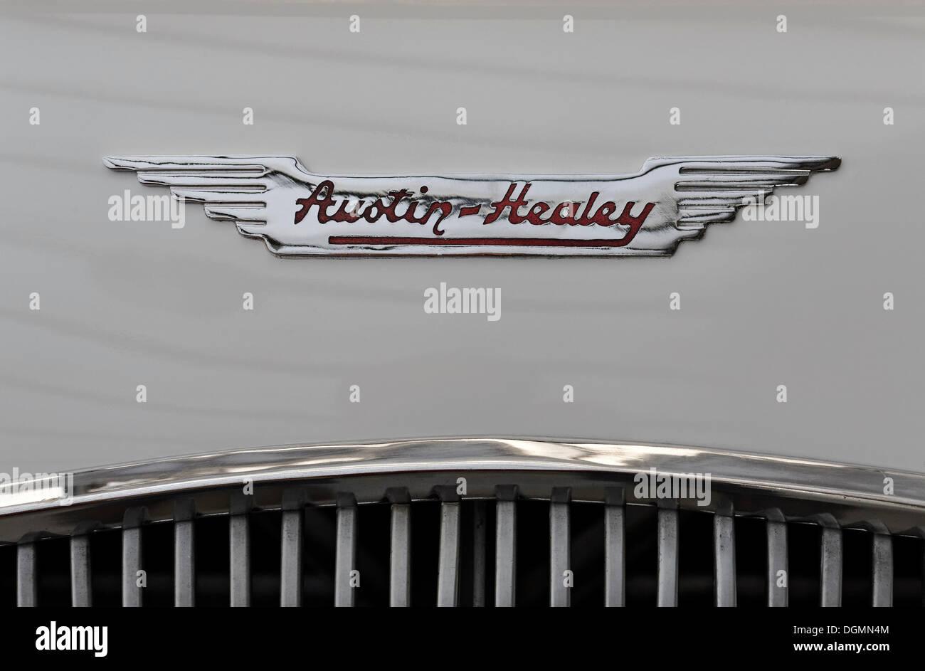 Austin-Healey-Logo auf der Motorhaube, britische Automarke Stockbild