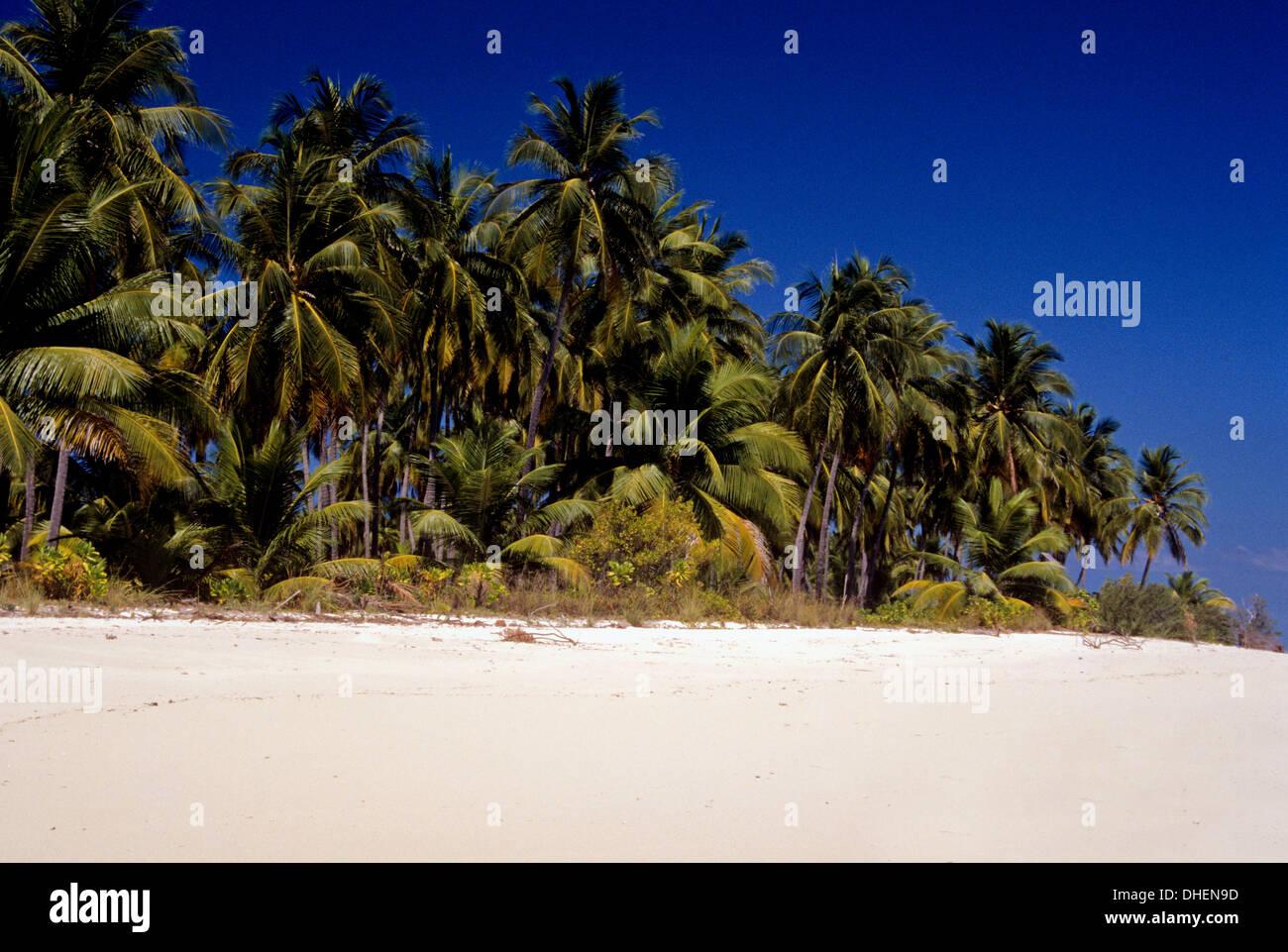 Bangaram Island Beach Resort