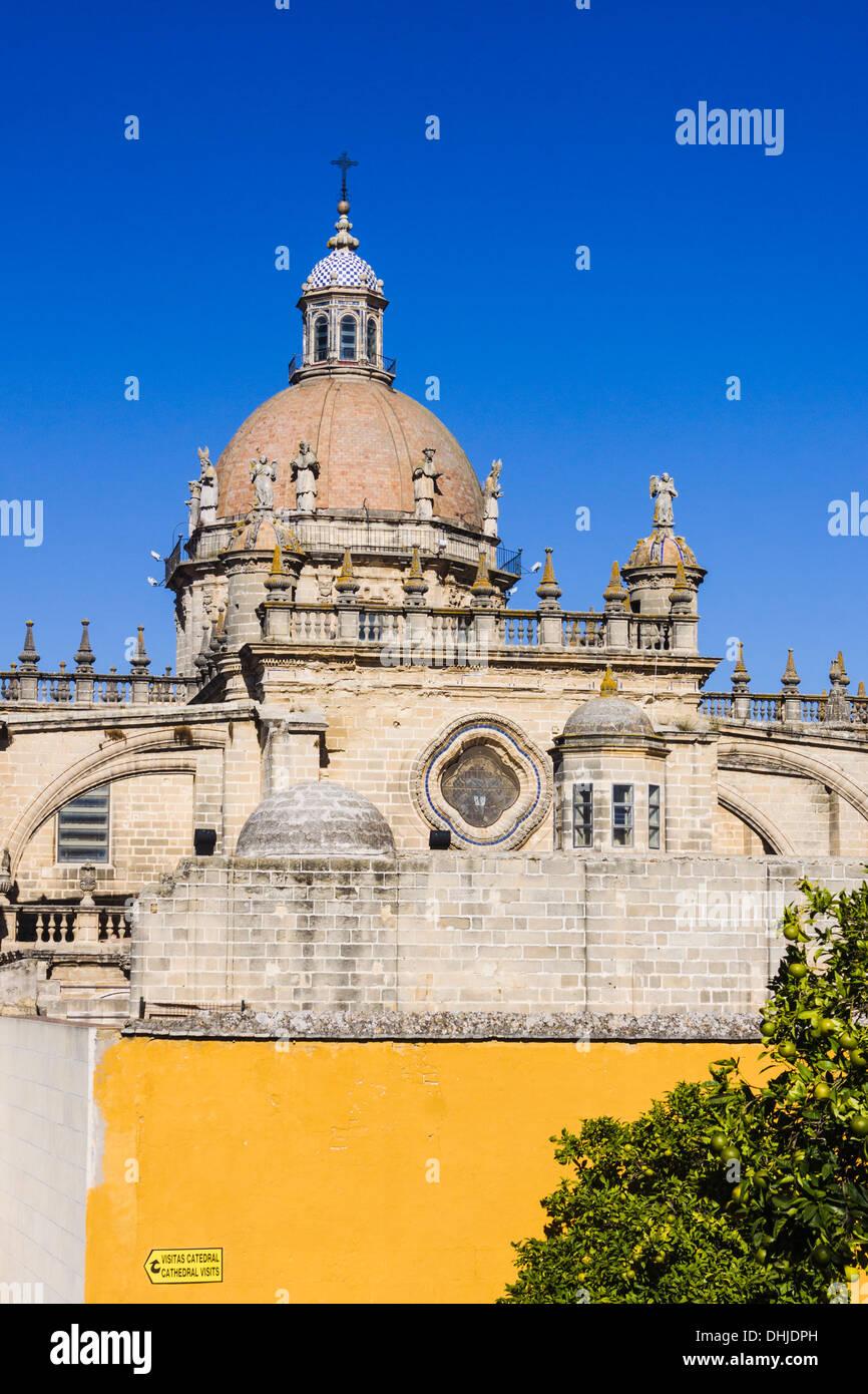 Kathedrale von San Salvador. Jerez De La Frontera, Provinz Cadiz, Andalusien, Spanien Stockbild