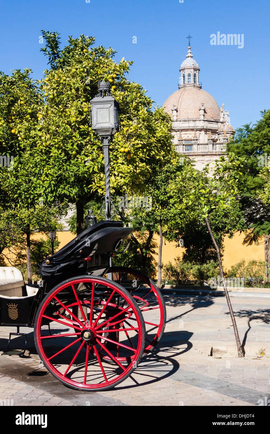 Buggy Schlitten neben der Kathedrale von San Salvador. Jerez De La Frontera, Provinz Cadiz, Andalusien, Spanien Stockbild