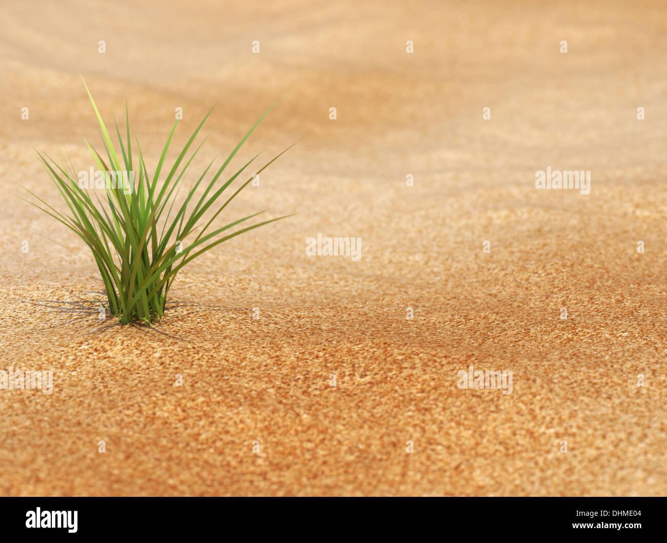Neues Leben - Pflanze in Verwicklungen Stockbild