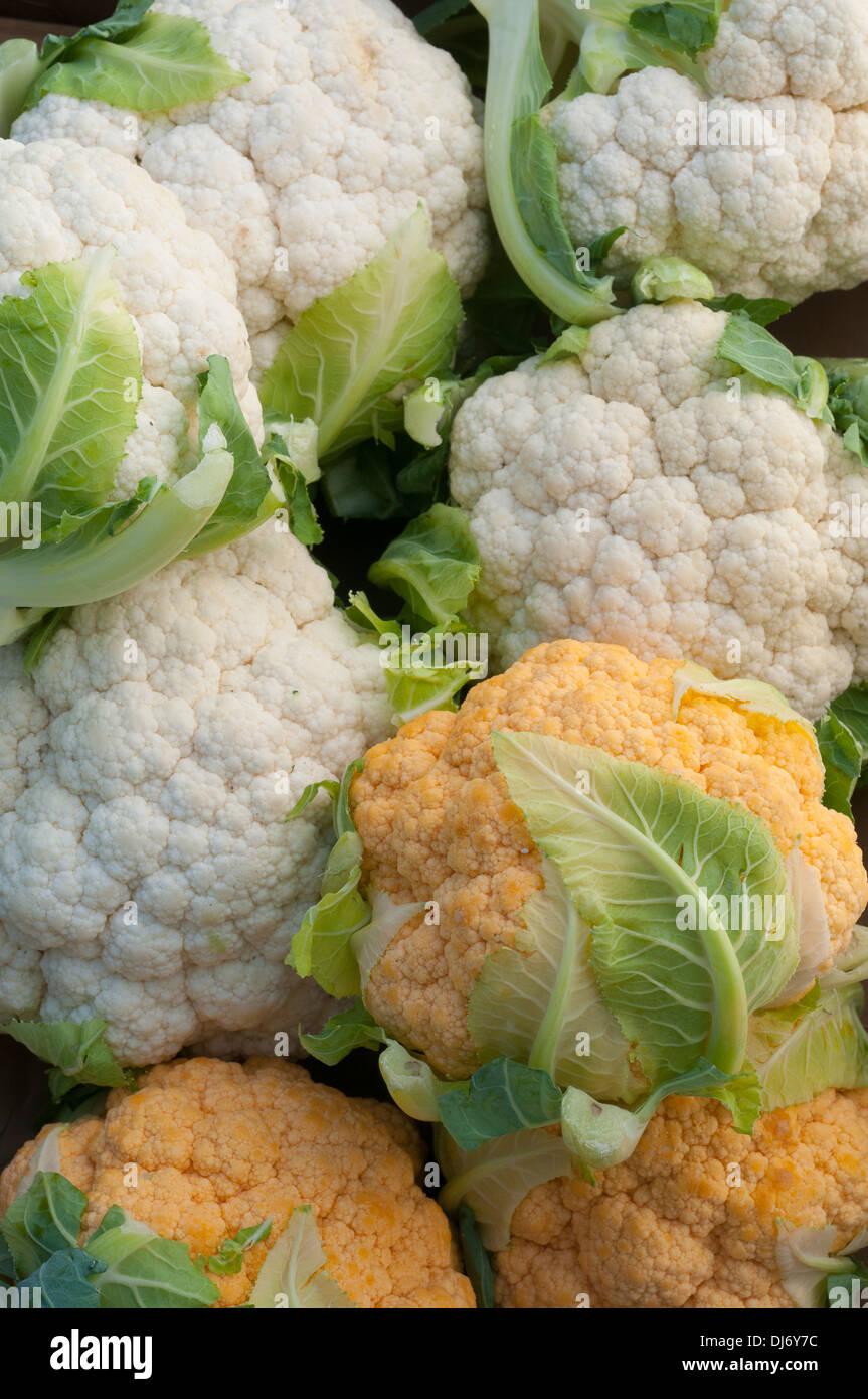 Blumenkohl in einer Box frisch vom Bauernmarkt. Produzieren, Orange und weiß Blumenkohl Stockbild