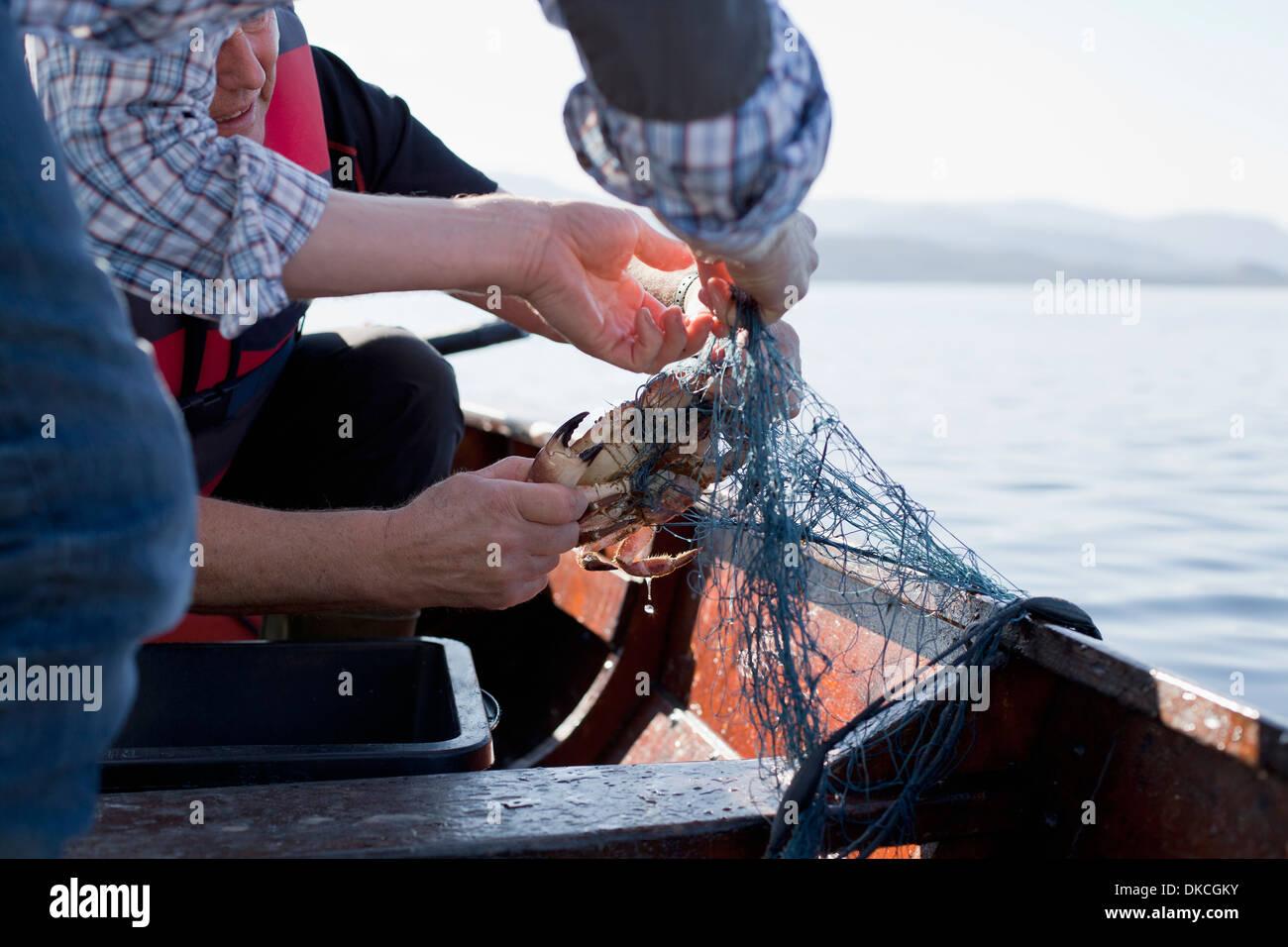 Menschen auf dem Boot Fischfang für Krabben, Aure, Norwegen Stockbild