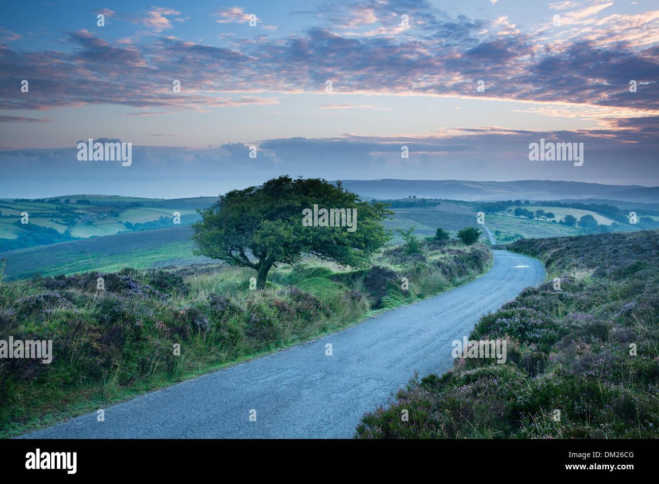 die Straße über Stoke Pero üblich, Dunkery Hill, Exmoor National Park, Somerset, England, UK Stockbild