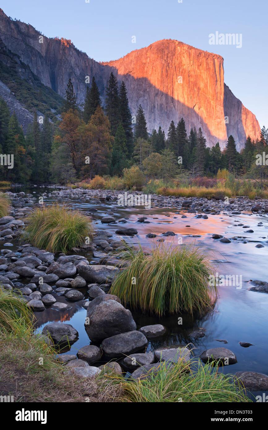 Am Abend die untergehende Sonne am El Capitan oberhalb der Merced River, Yosemite Tal, Yosemite-Nationalpark, Kalifornien, Stockbild