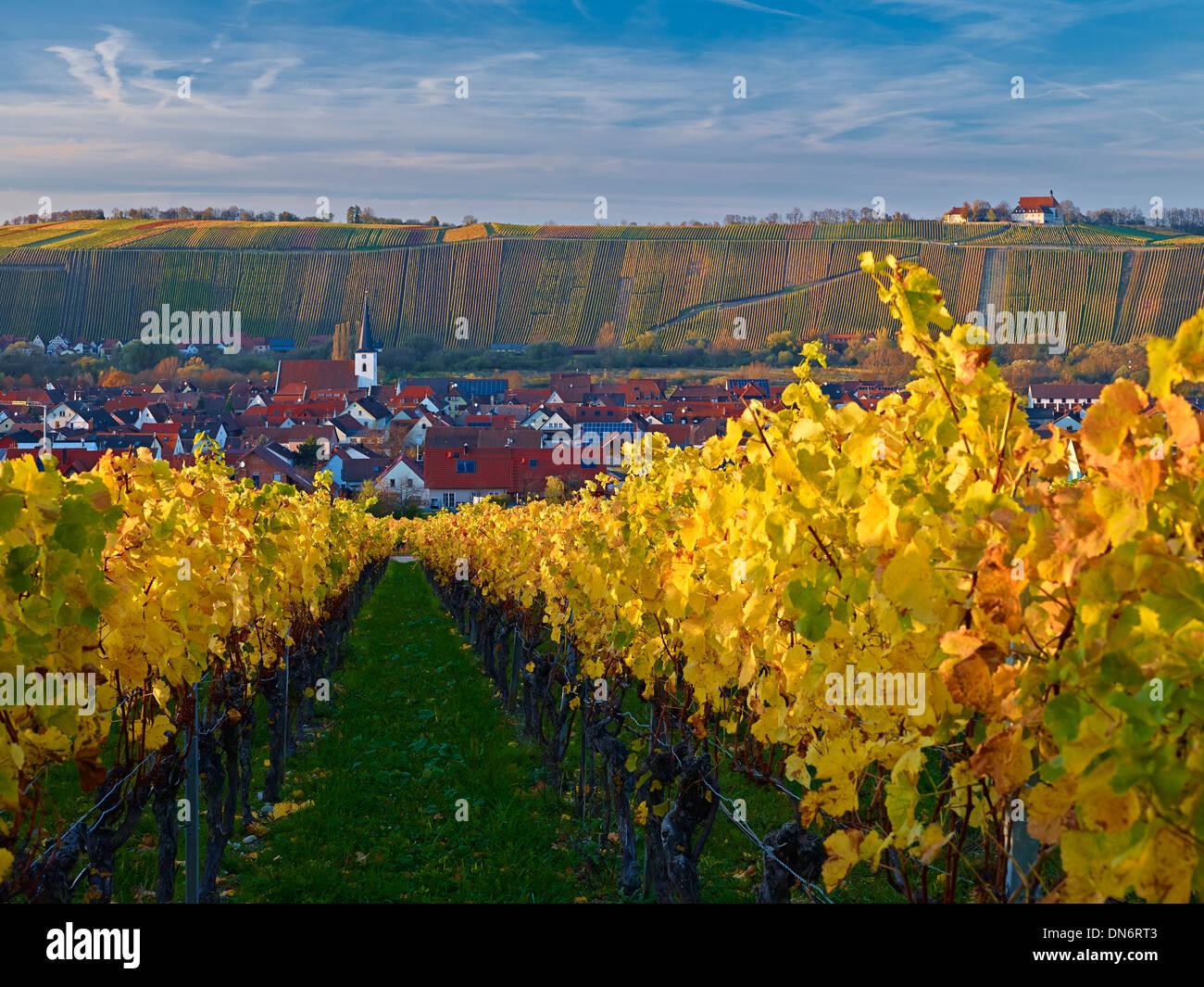Blick über Weinberge in Nordheim mit Vogelsberg Kloster in Volkach, Franken, Bayern, Deutschland Stockbild