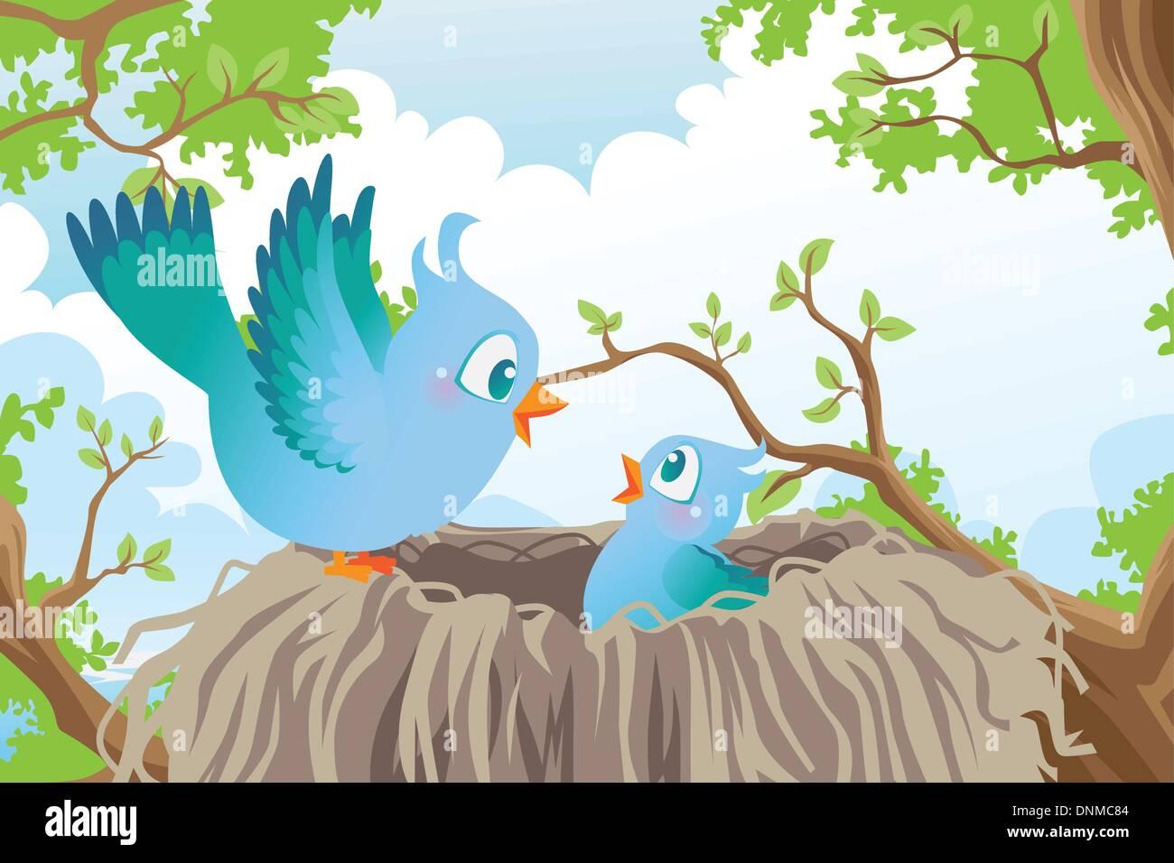 Eine Vektor-Illustration der Vögel im nest Stock Vektor
