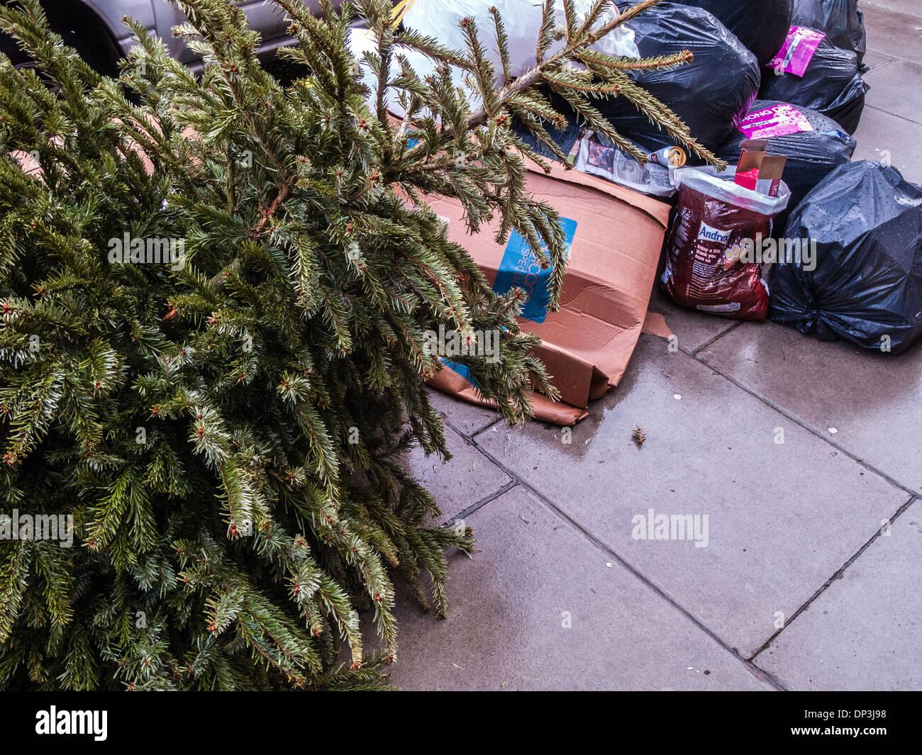 Christmas Tree Recycling und Abfallentsorgung Stockbild