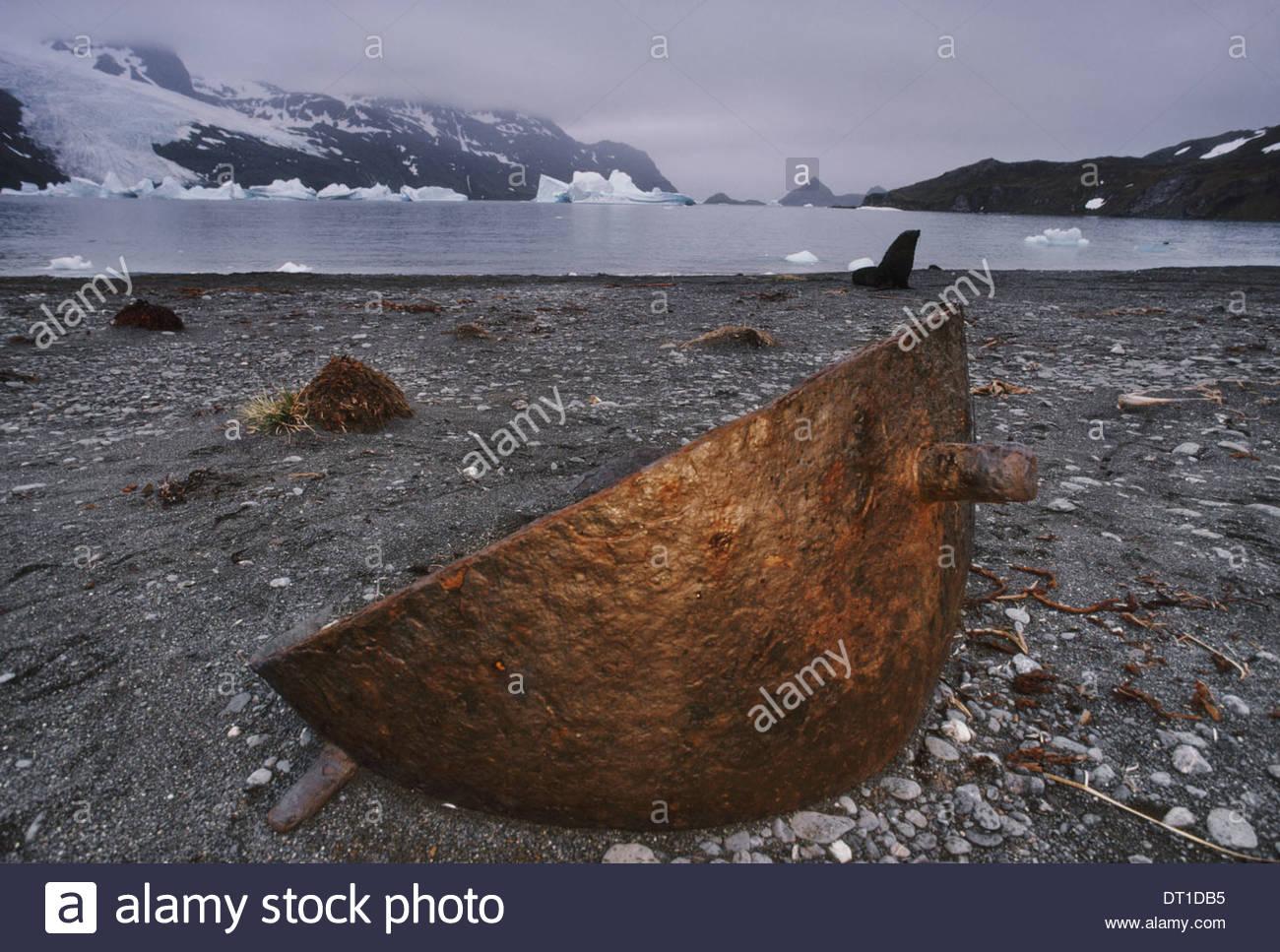Grytviken Südgeorgien Insel Dichtung Kochen Topf South Georgia Island Stockbild