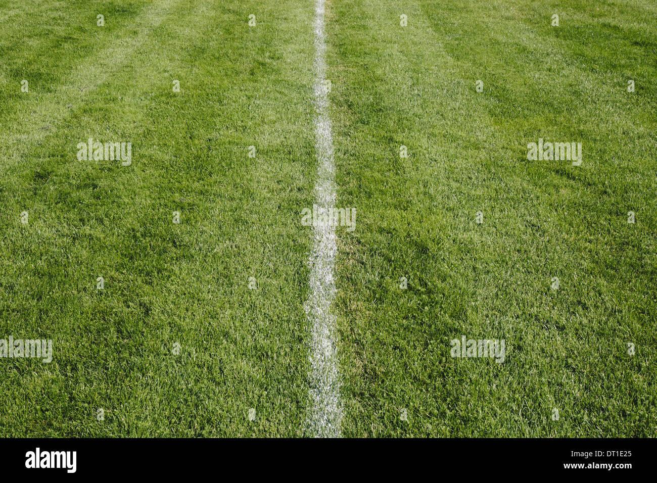 Washington State USA weiß Mittellinie auf Grasschnitt Sportbelag Stockbild