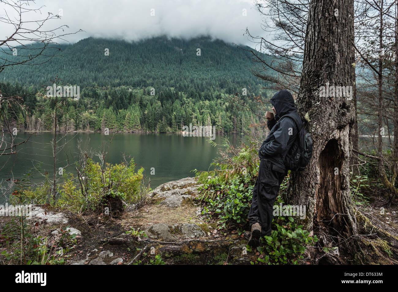 Mann, die wasserdichte Kleidung von Baum, Buntzen Lake, British Columbia, Kanada Stockbild