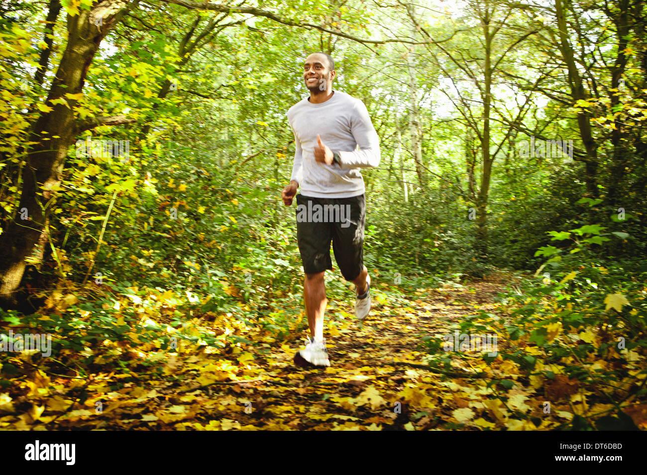 Mann im Wald joggen Stockbild