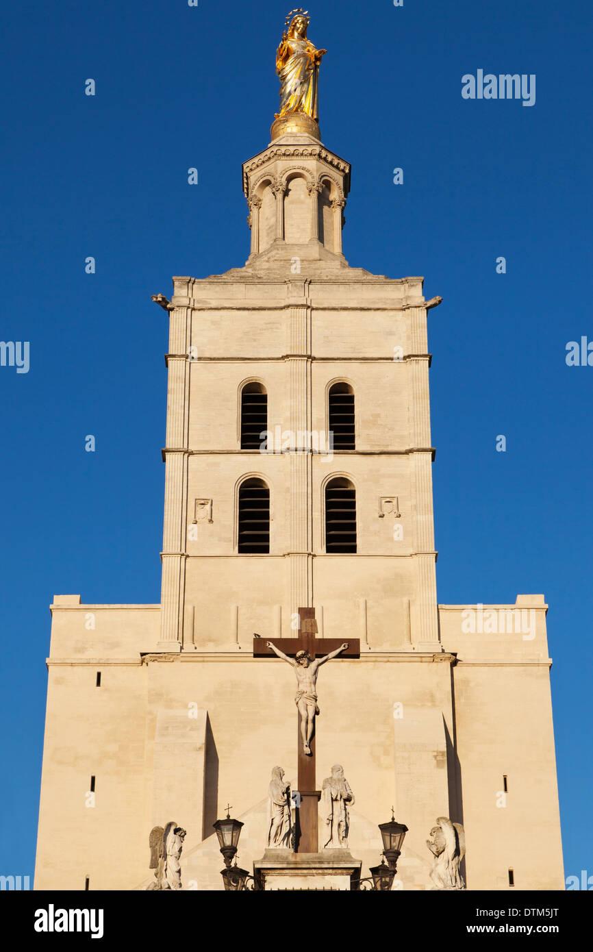 Metropole-Notre-Dame des Doms in Avignon, Frankreich. Stockbild