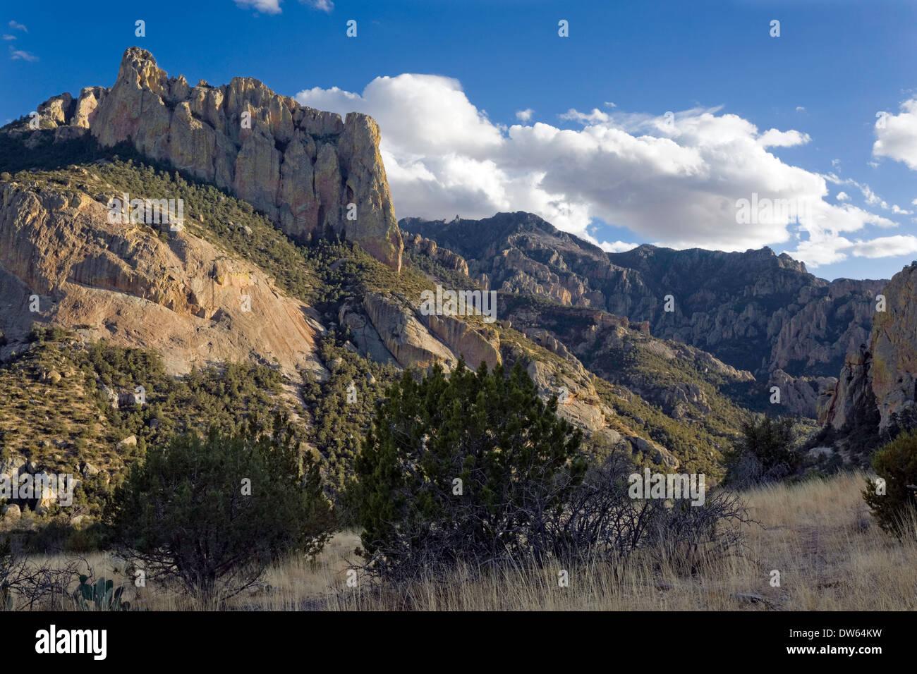 Chiricahua Bergen, Portal, Arizona Stockbild