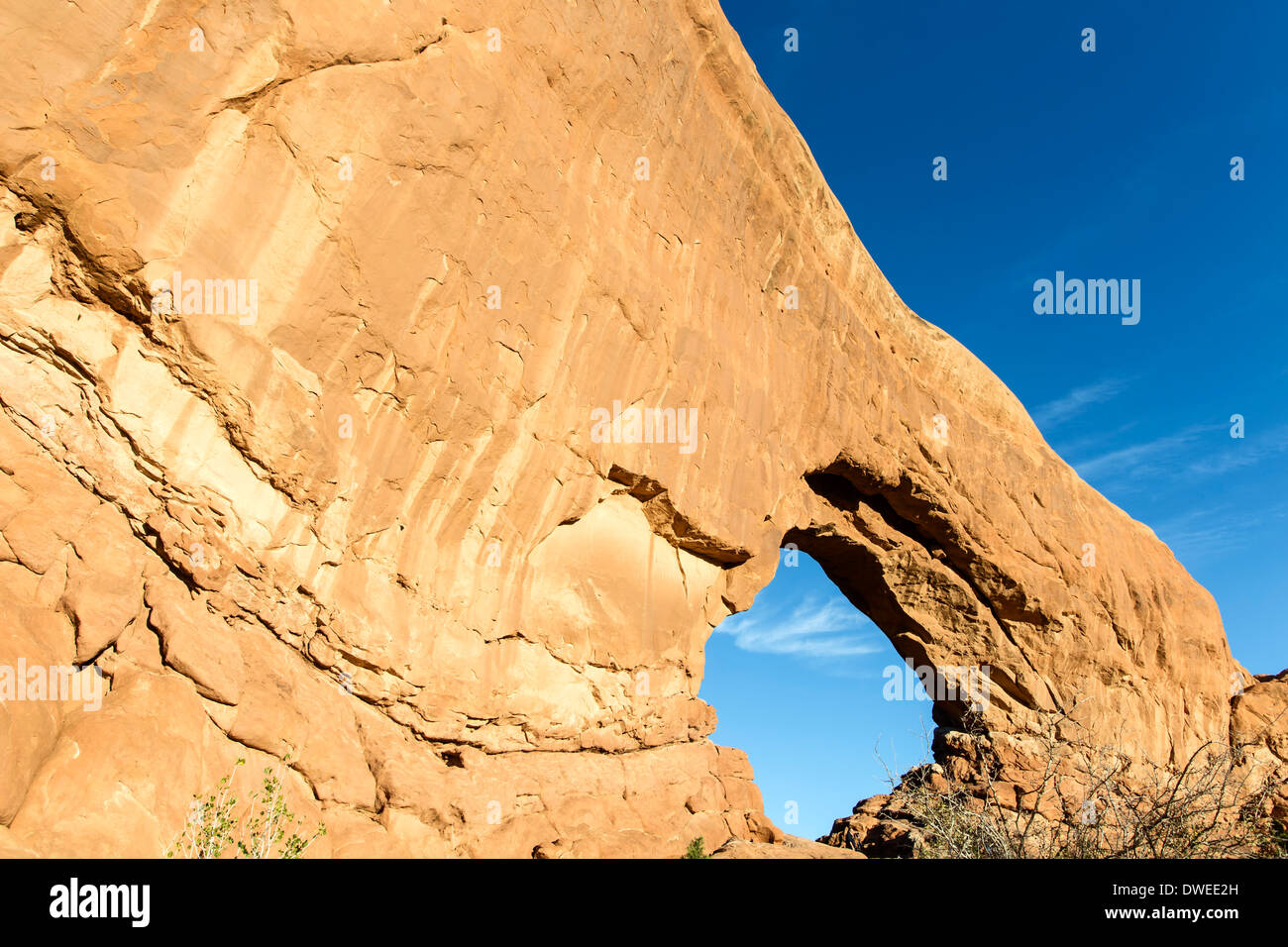 Nord-Fenster, Arches-Nationalpark, Moab, Utah USA Stockbild