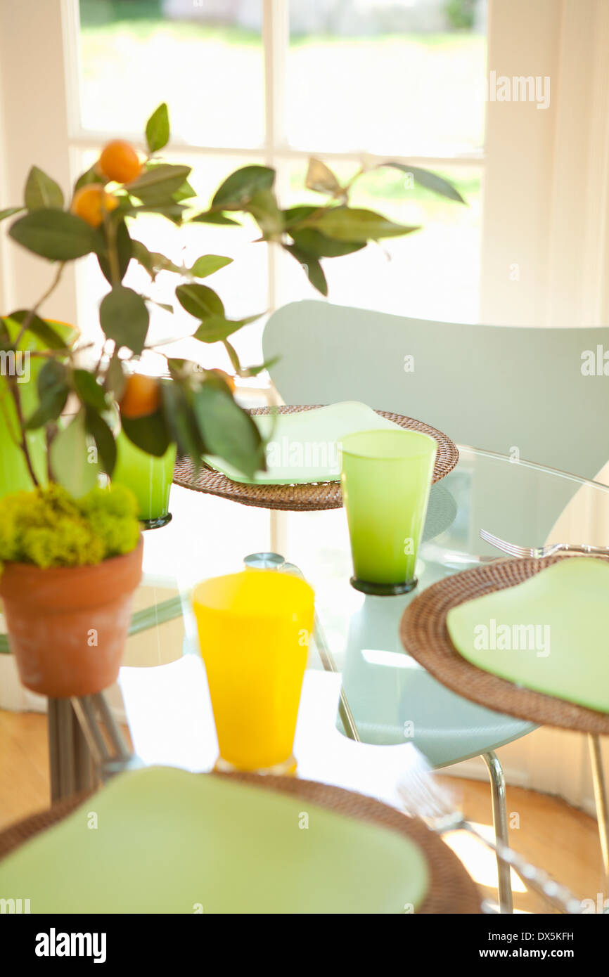 Topfpflanze auf sonnigen Tisch Gedecke Stockbild
