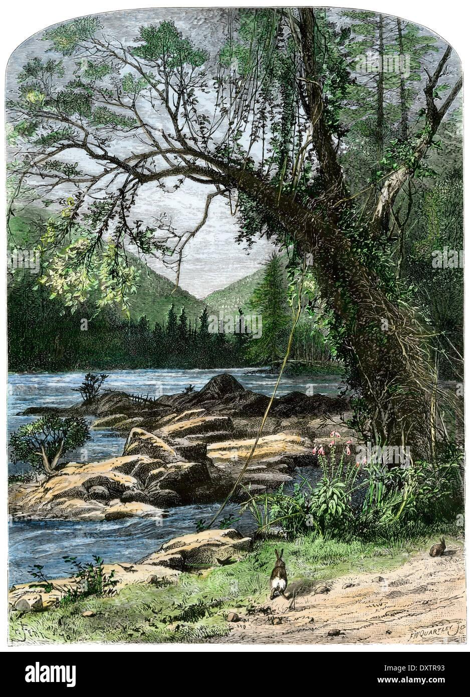 Blick auf den French Broad River in den Bergen von North Carolina. Stockbild