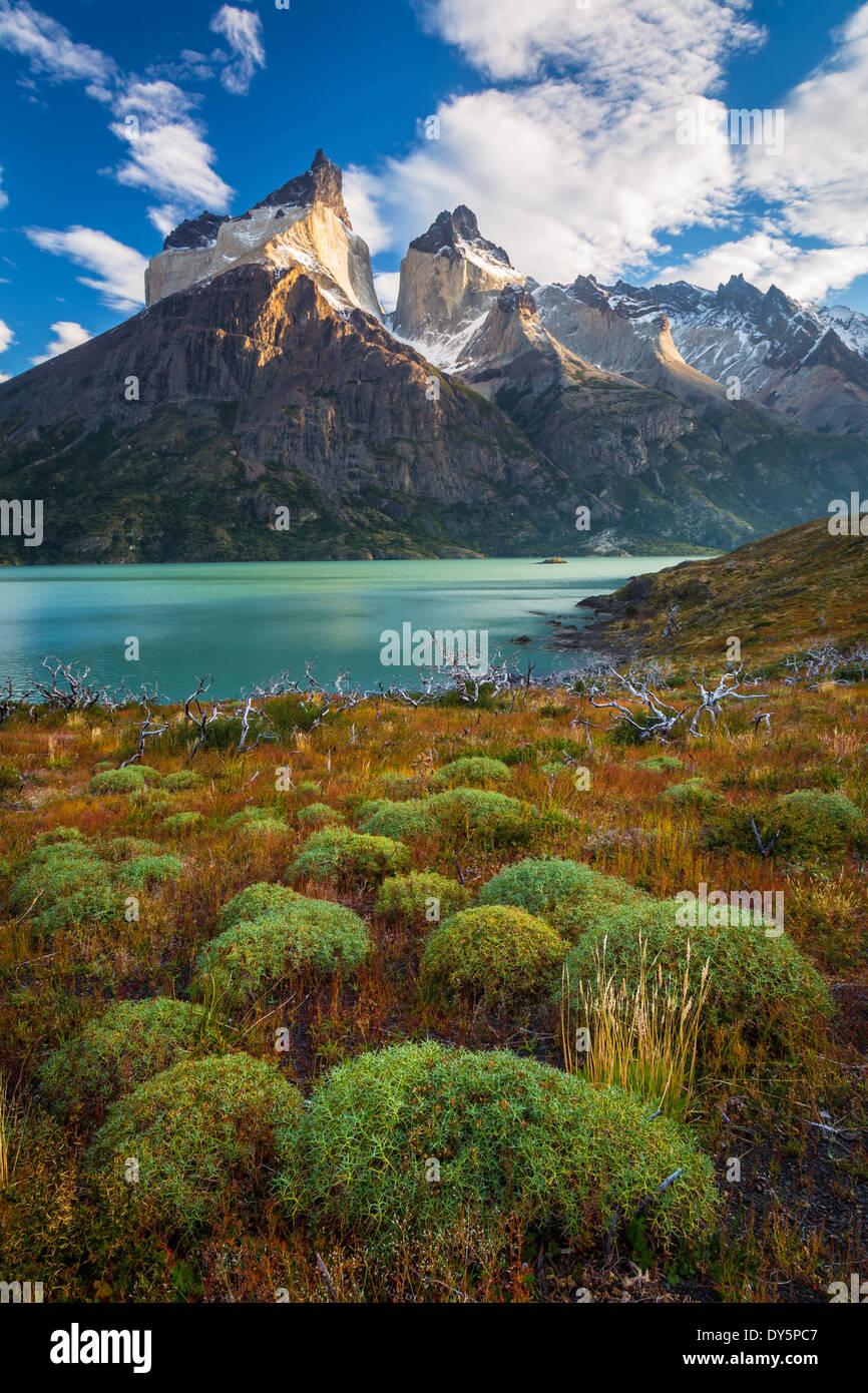 Los Cuernos überragt Lago Nordenskjold im Torres del Paine, chilenischen Teil Patagoniens Stockbild