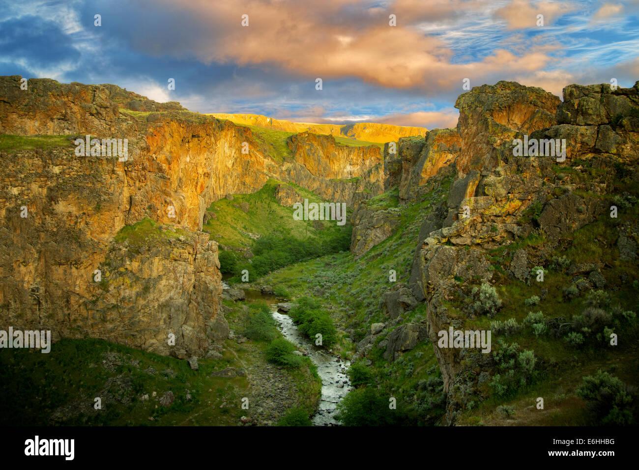 Beistand Creek Canyon mit Sonnenuntergang. Malheur Grafschaft, Oregon Stockbild