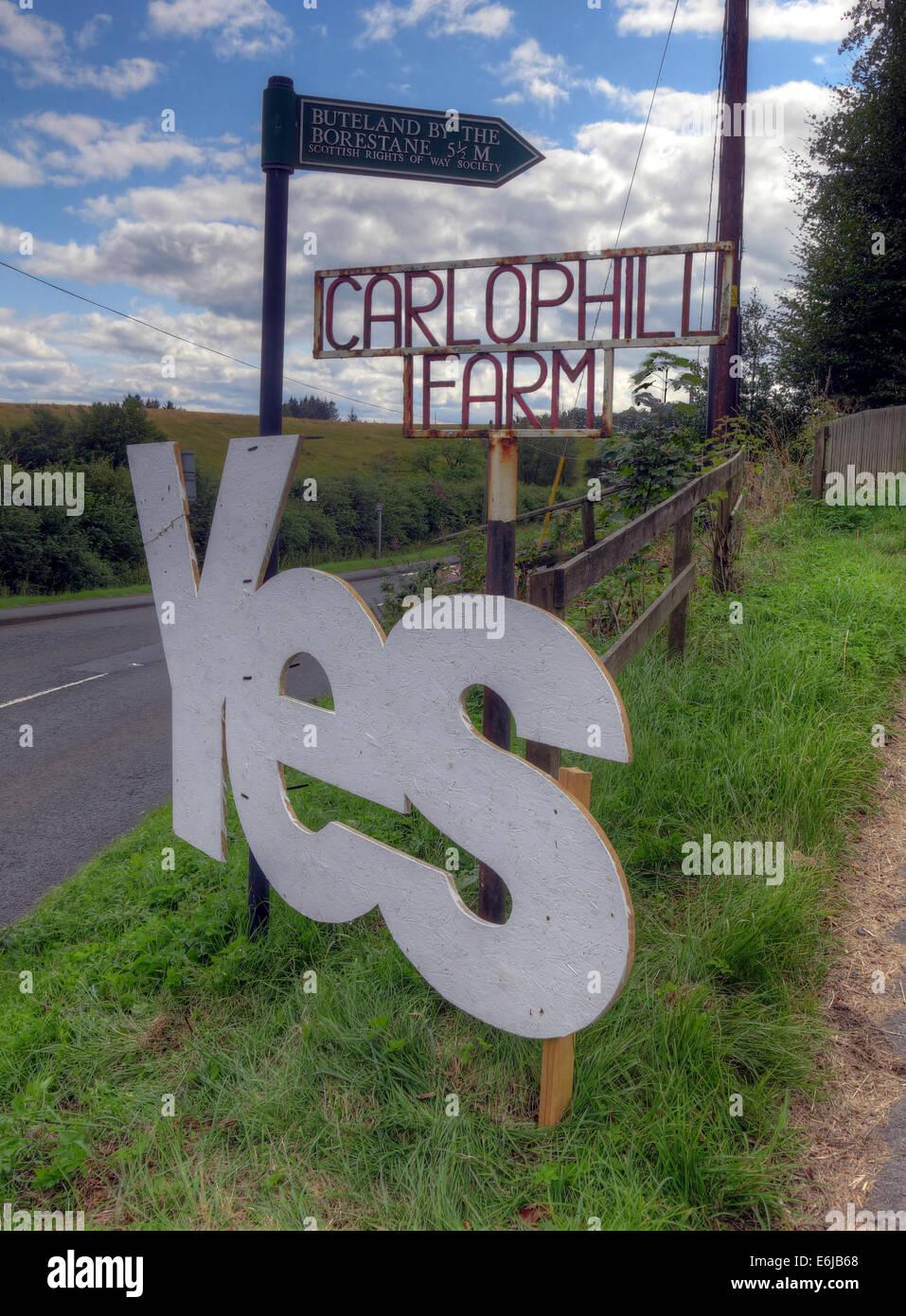 Laden Sie dieses Alamy Stockfoto Ja zur schottischen Unabhängigkeit Zeichen auf der Carlophill Farm, Carlops, Scottish Borders, Schottland September 2014 - E6JB68