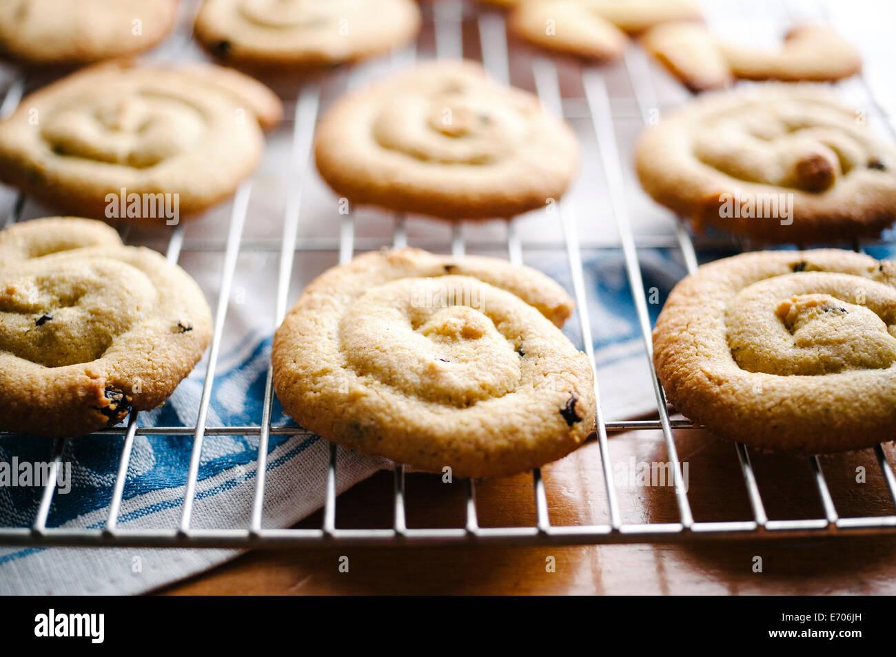 Hausgemachte Kekse Stockbild