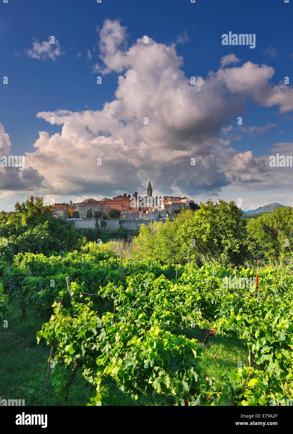 Labin, Istrien-Kroatien Stockbild