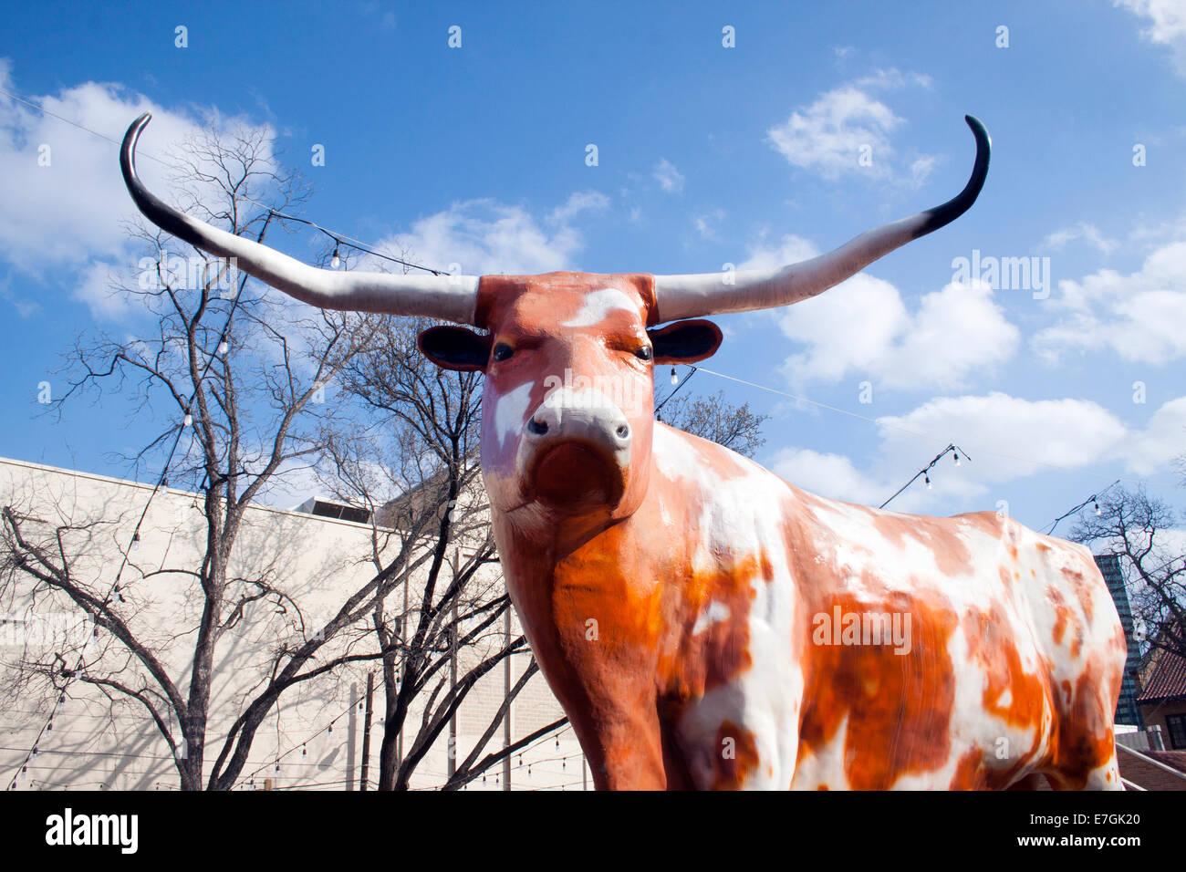 Riesen lange Horn Steer in Austin Texas Stockbild