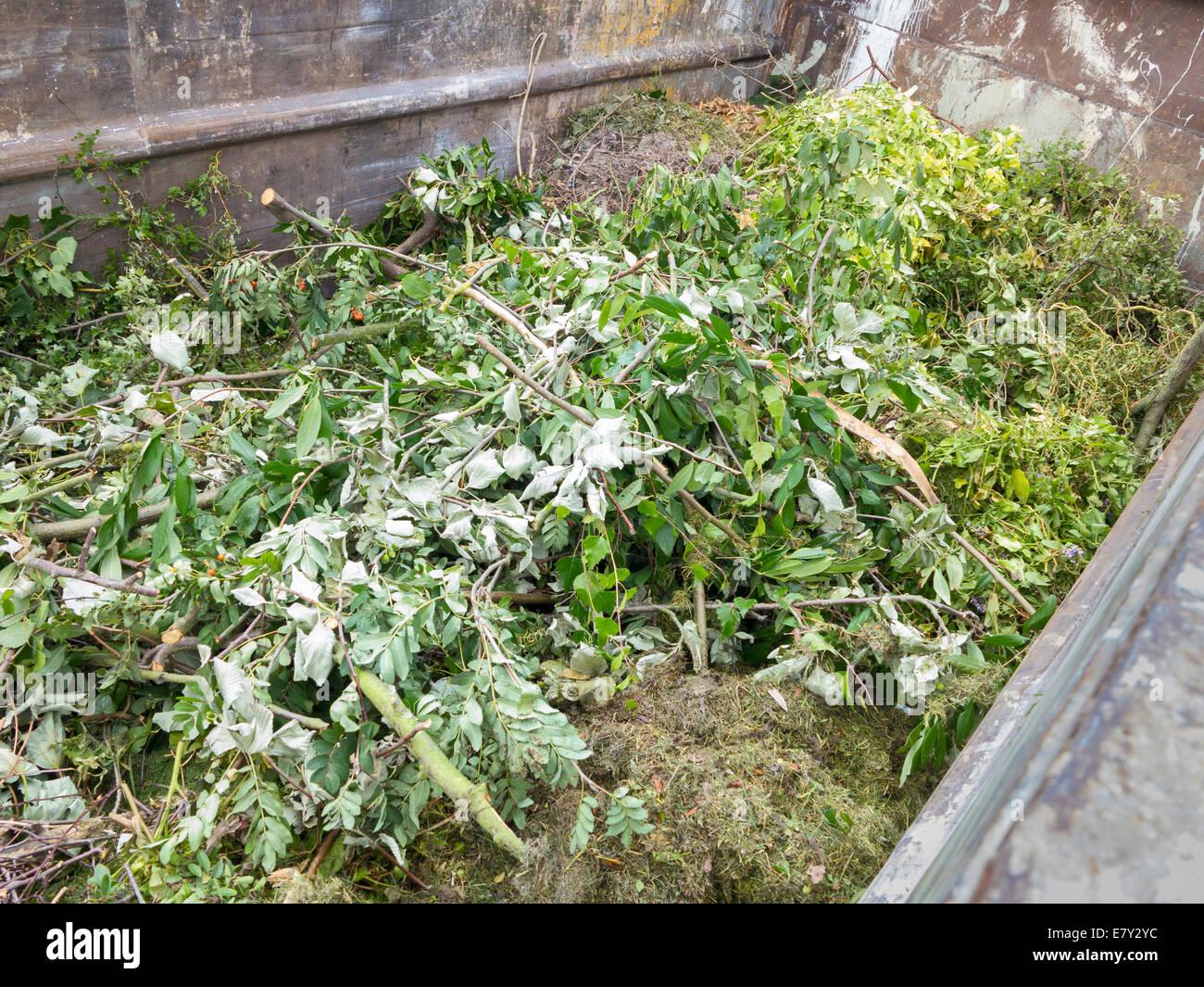 Gebietskörperschaft öffentlichen Recyclinganlage für grüne Gartenabfälle, UK Stockbild