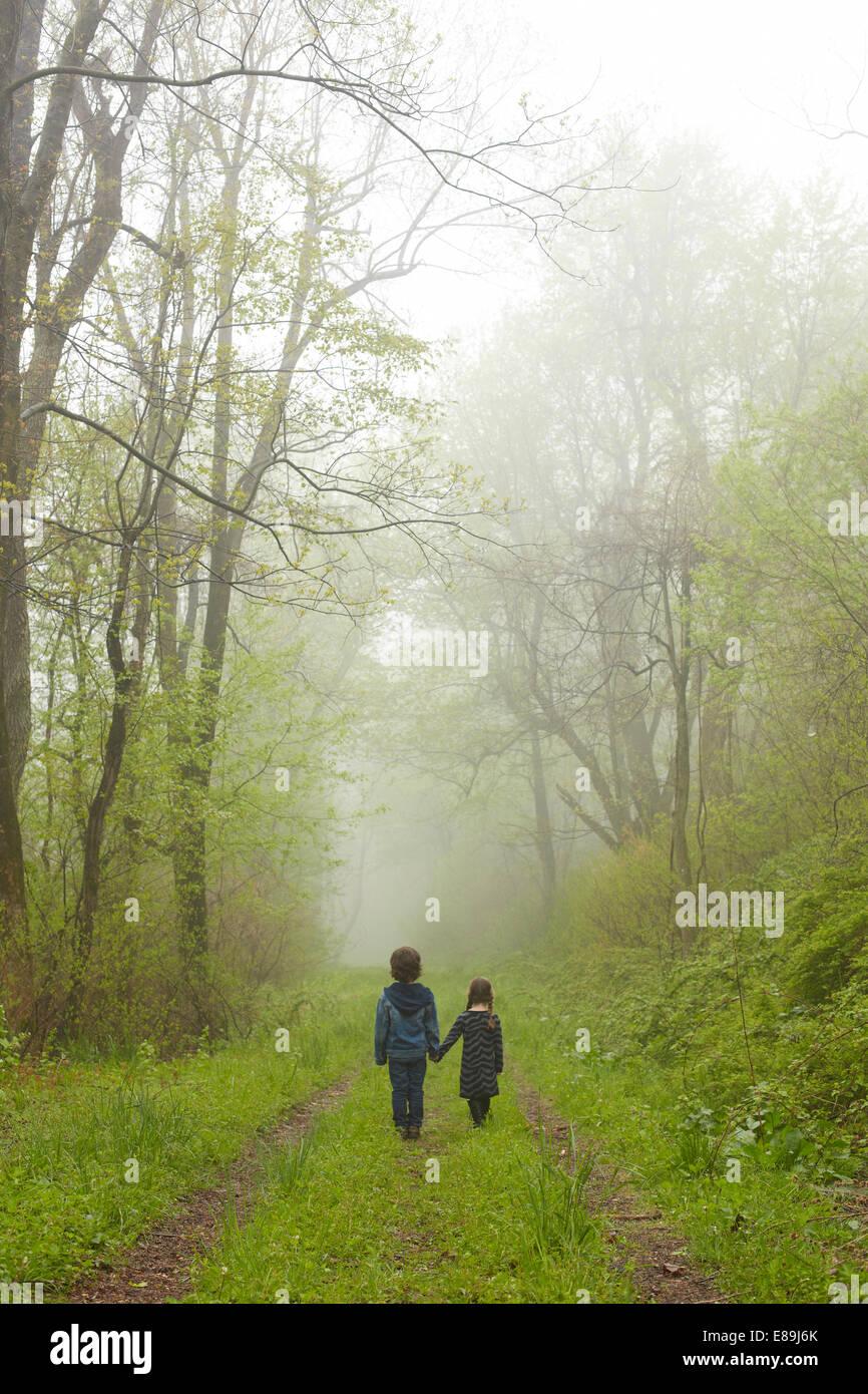 Bruder und Schwester zu Fuß auf Nebel Weg Stockbild