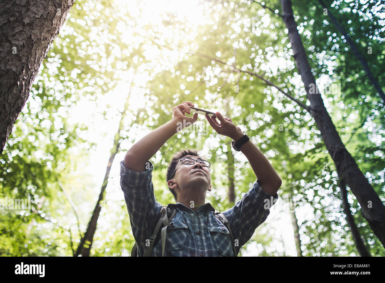 Wanderer nehmen Foto auf Kamera-Handy im Wald Stockbild
