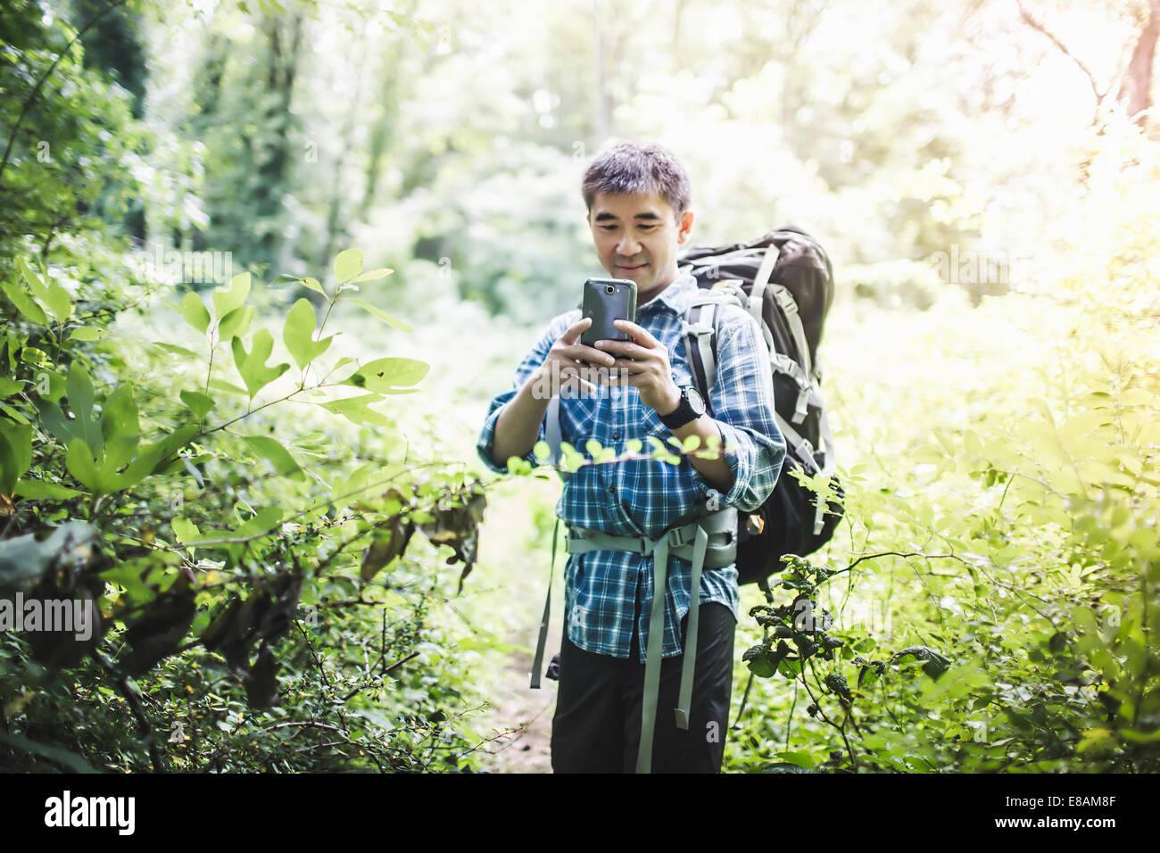 Wanderer nehmen Foto mit Kamera-Handy im Wald Stockbild