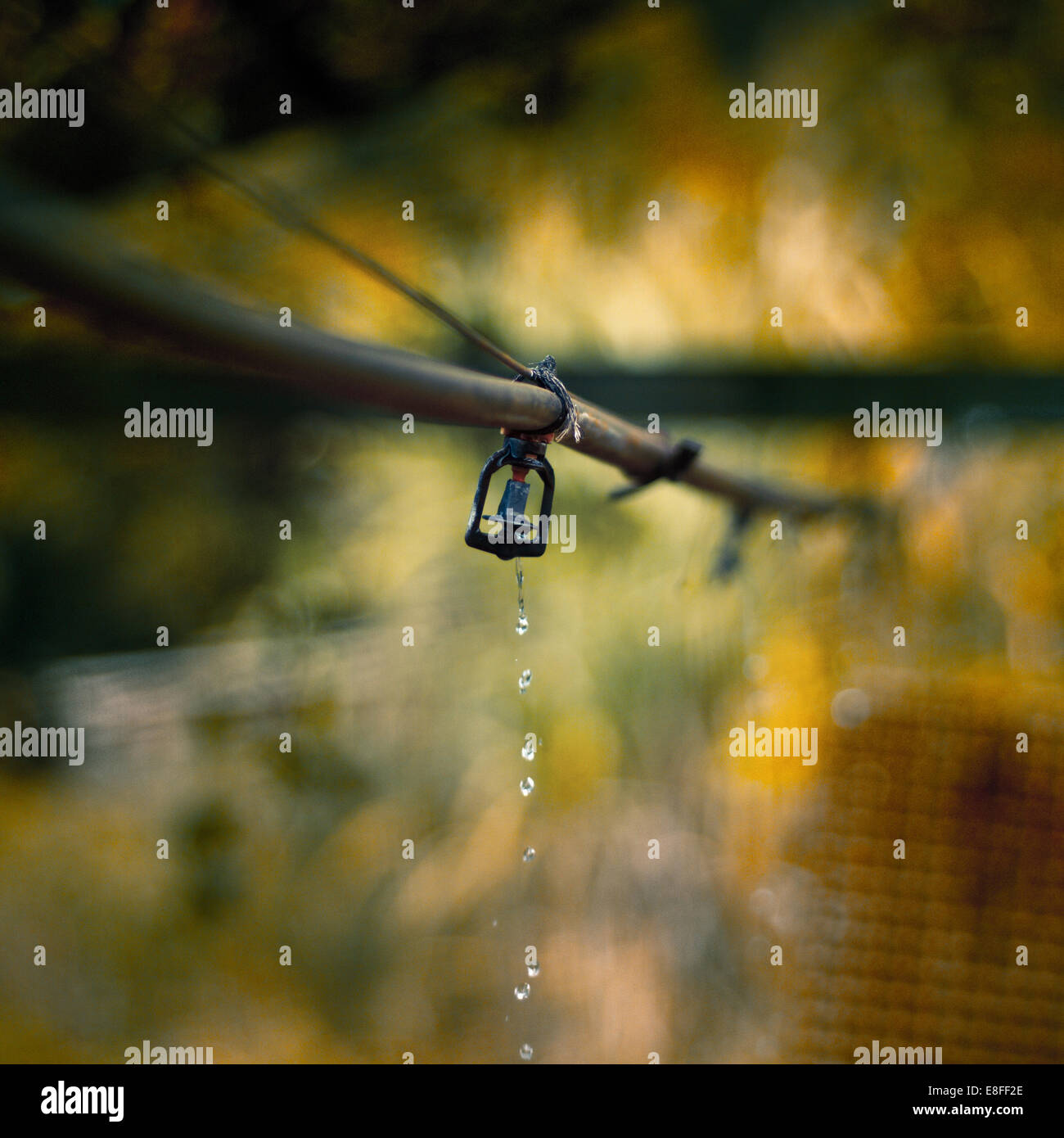 Nahaufnahme von Outdoor-sprinkler Stockfoto