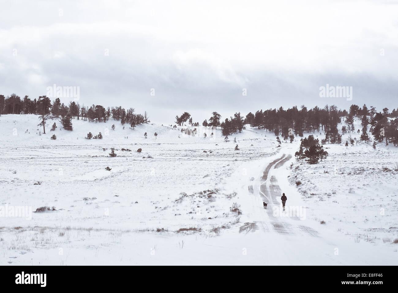Frau Fuß Straße mit Hund im Winter, Illinois, America, USA Stockbild