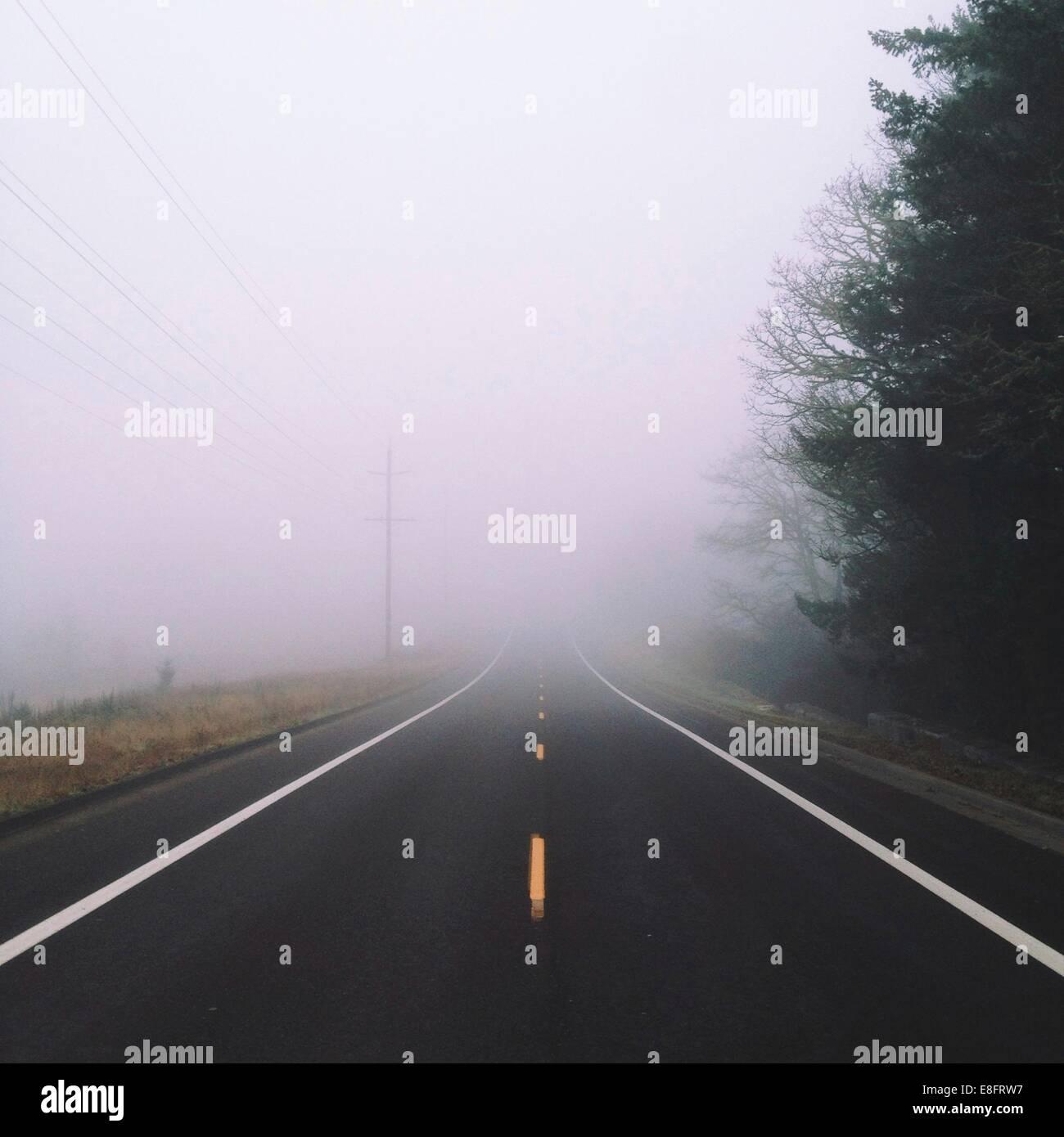Nebel auf Straße Stockbild