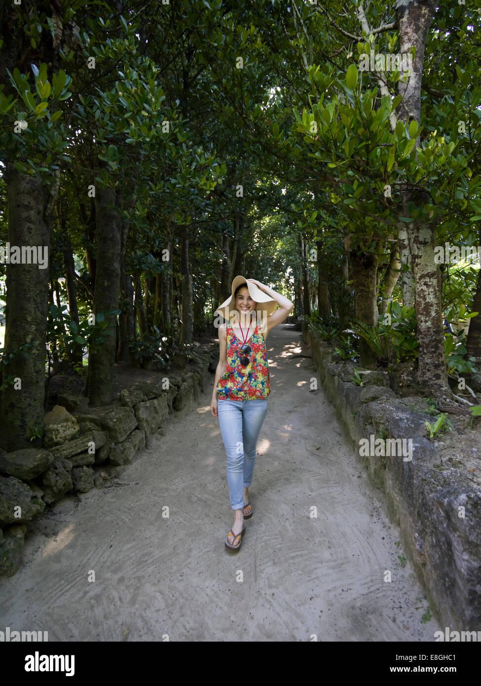 Erkunden Bise Fukugi Baum Straße, Motobu, Okinawa. Stockbild