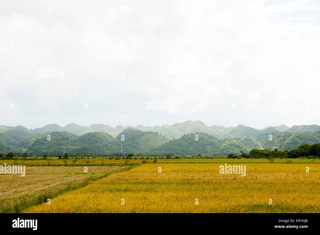 Dominikanische Republik, Osten, Autopista del Nordeste von nagua / Santo Domingo, Hügel des Nationalparks Los Stockbild