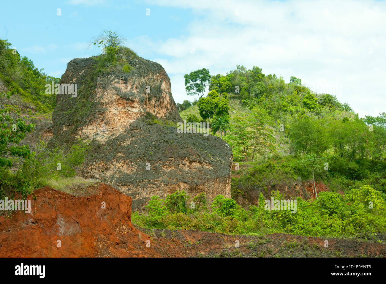 Dominikanische Republik, Osten, Autopista del Nordeste von nagua / Santo Domingo durch den Nationalpark Los Haitises, Stockbild