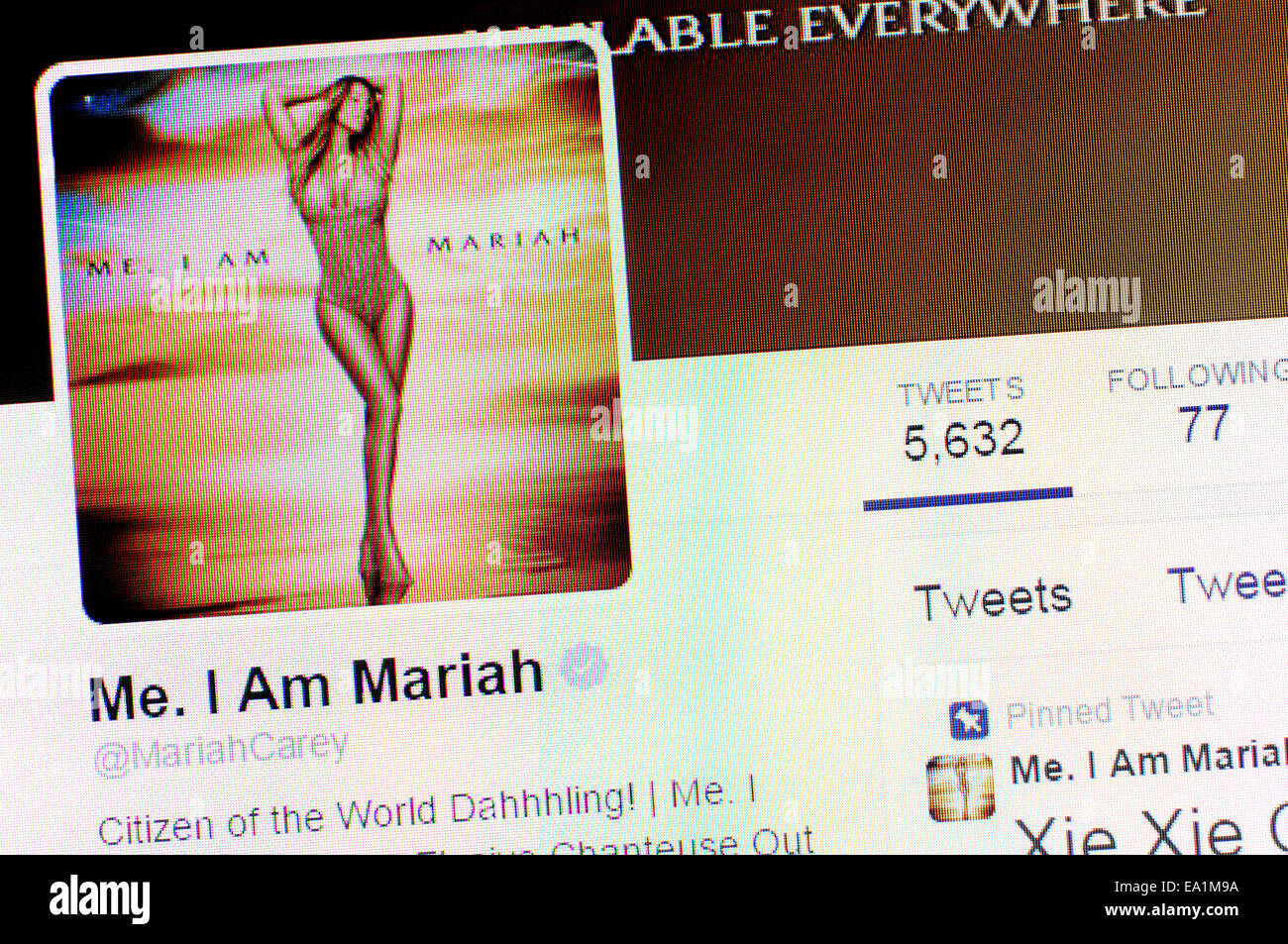 Mariah Carey-Twitter-Account - Screenshot der Profilseite Stockbild