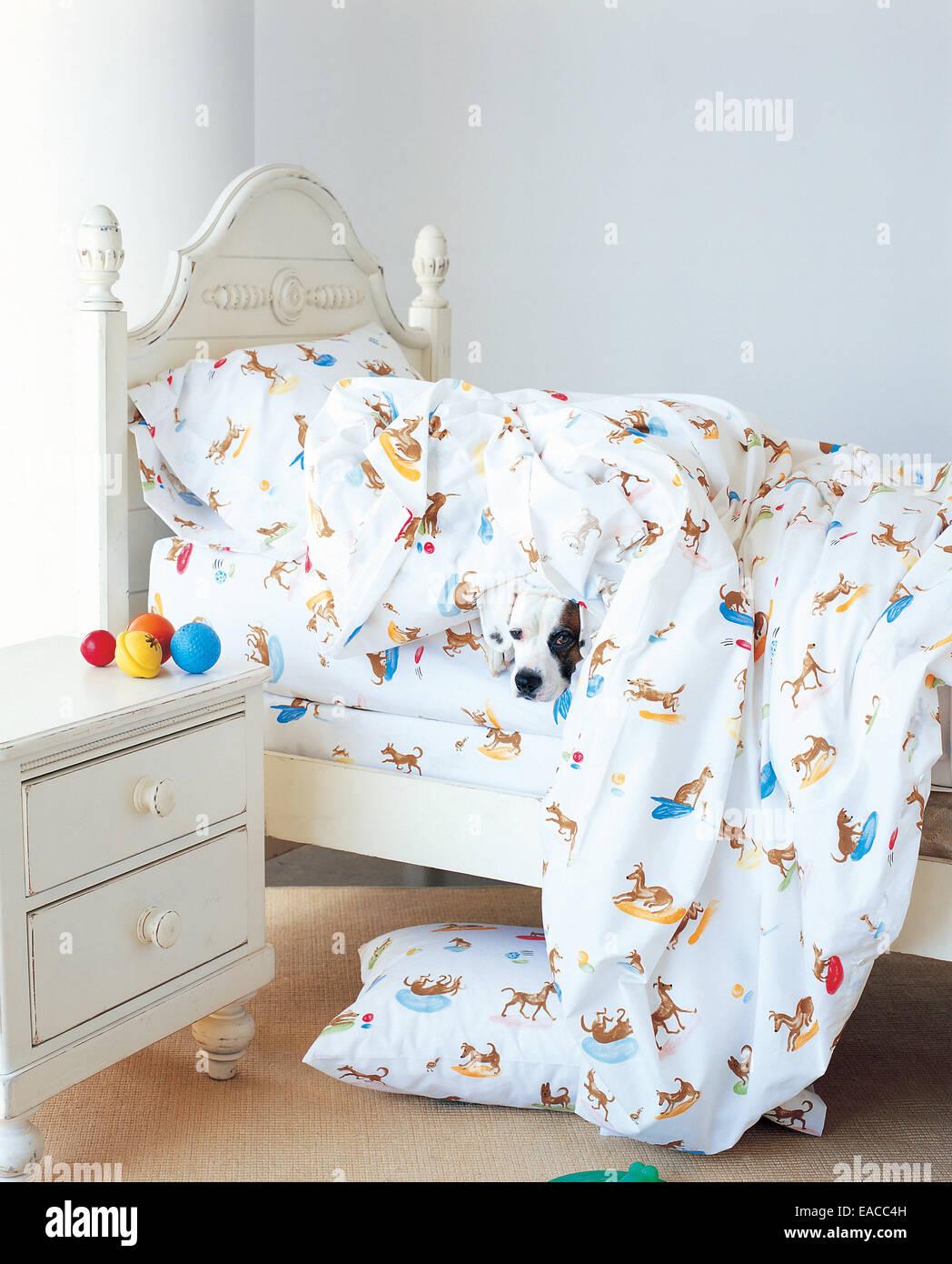Hund versteckt unter Decken im Bett Stockbild