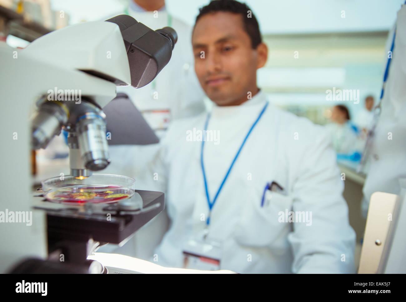 Wissenschaftler mit Probe unter dem Mikroskop im Labor Stockbild