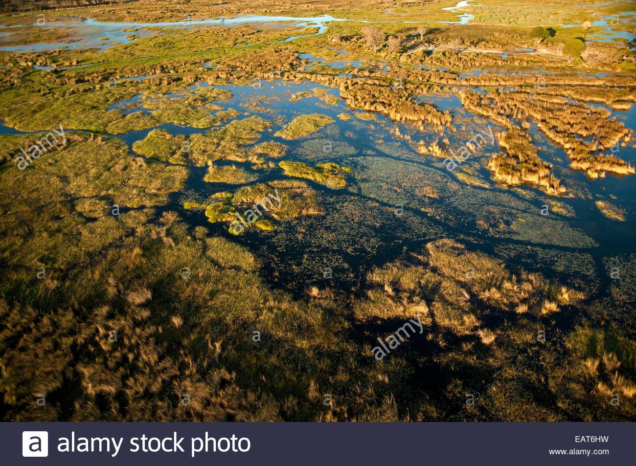 Eine Luftaufnahme des Okavango Deltas im Moremi Game Reserve. Stockbild